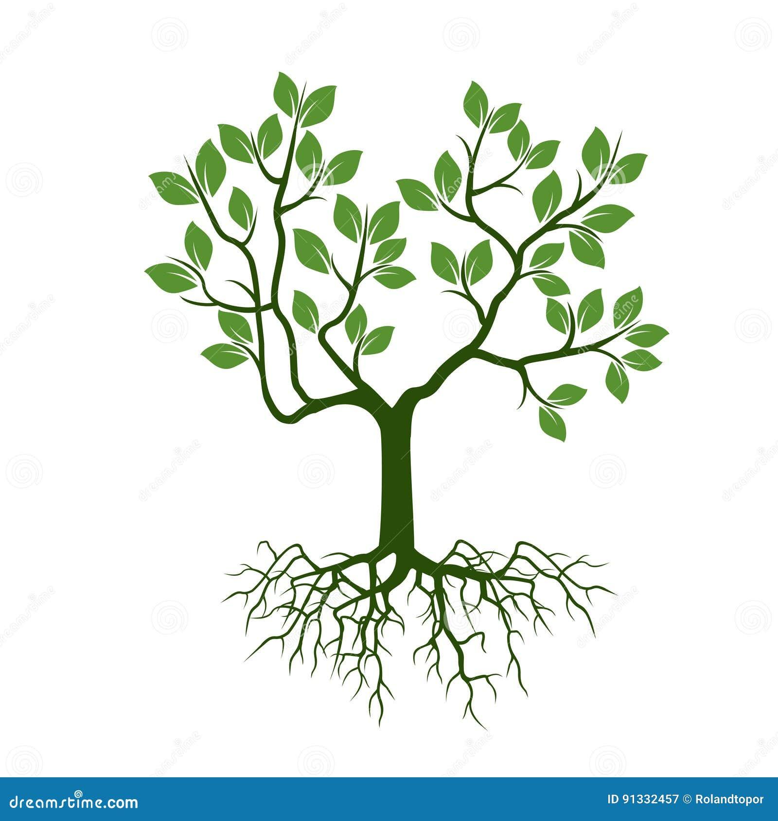 Шаблоны деревьев для корела скачать бесплатно