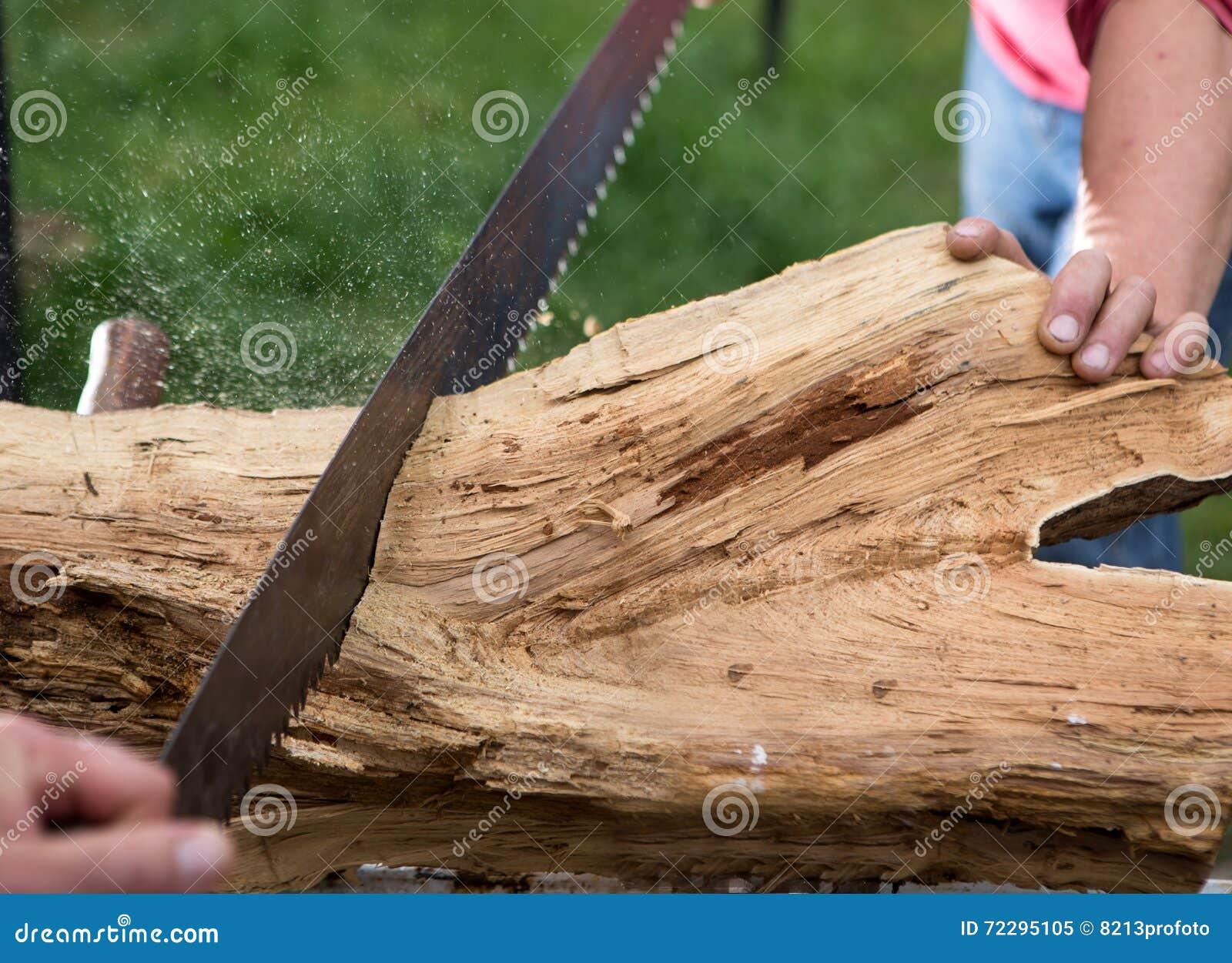 Download Деревья вырезывания для швырка, вырезывания ручной пилы Стоковое Изображение - изображение насчитывающей рука, joinery: 72295105