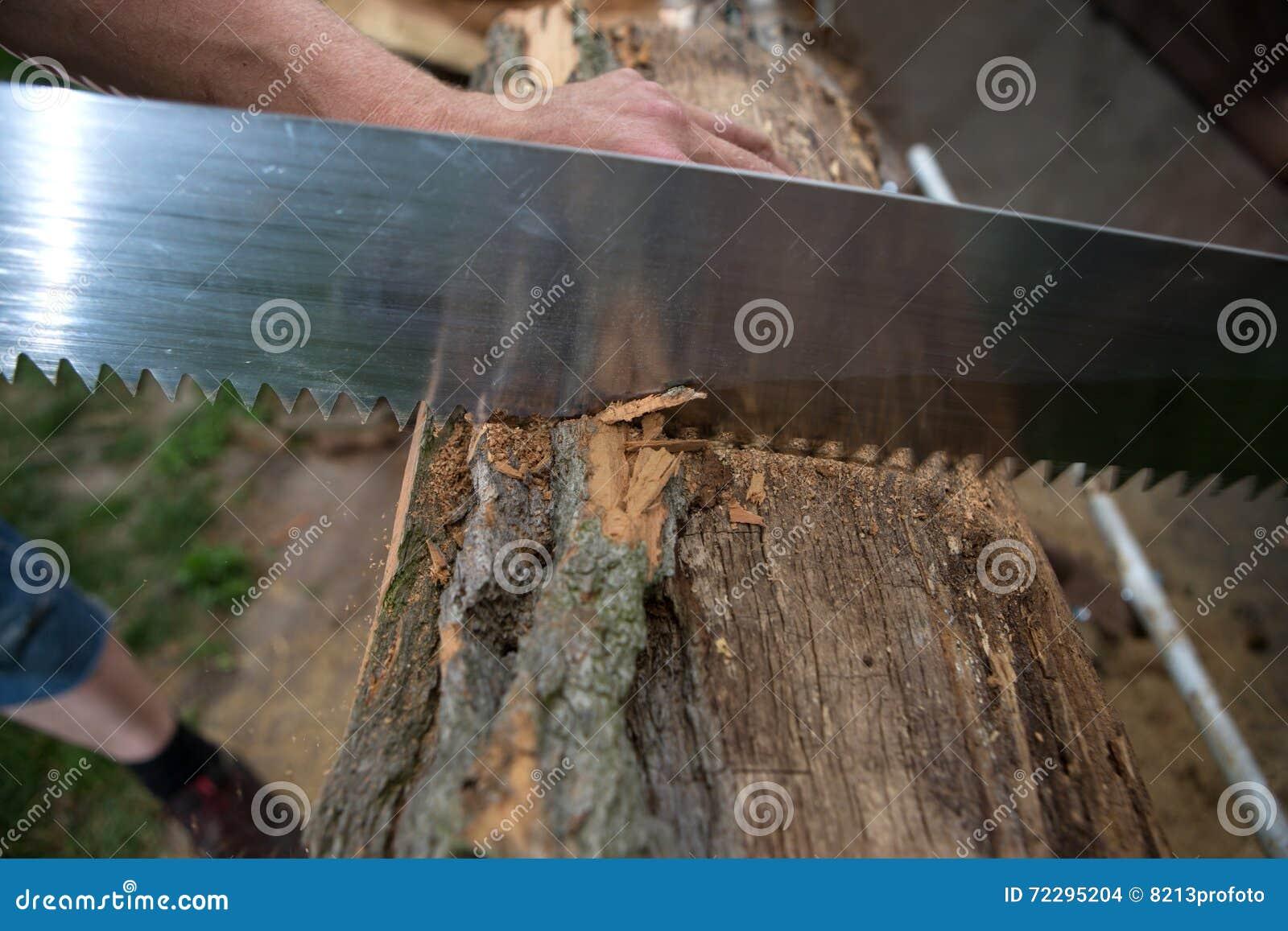 Download Деревья вырезывания для швырка, вырезывания ручной пилы Стоковое Фото - изображение насчитывающей lumberjack, joinery: 72295204
