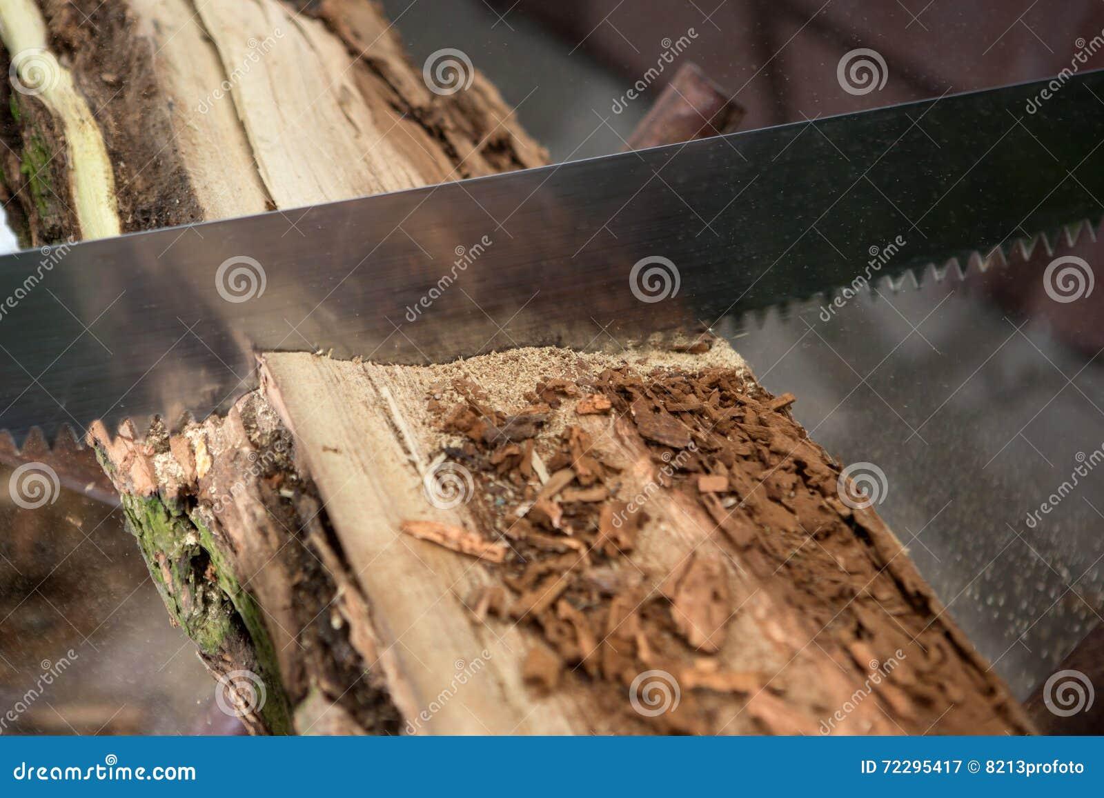 Download Деревья вырезывания для швырка, вырезывания ручной пилы Стоковое Изображение - изображение насчитывающей цепь, вырезывание: 72295417