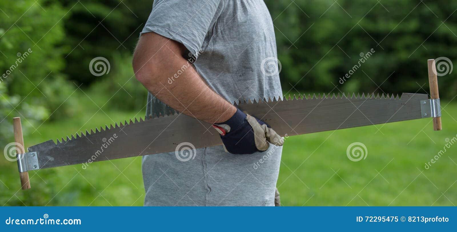 Download Деревья вырезывания для швырка, вырезывания ручной пилы Стоковое Изображение - изображение насчитывающей лесопогрузчик, backhoe: 72295475