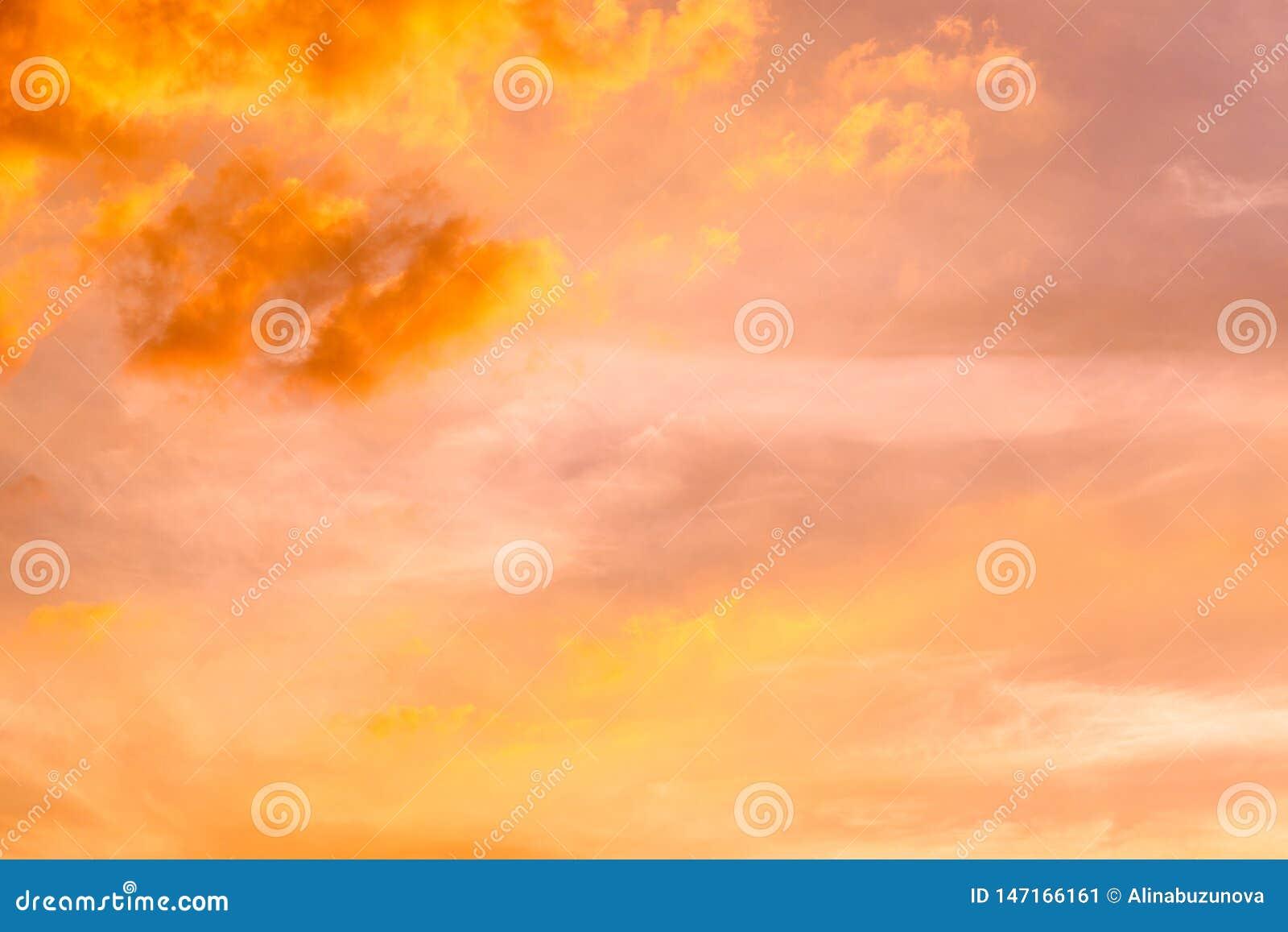 Деревья облаков неба захода солнца оранжевые Красочная абстрактная предпосылка с пламенистыми оранжевыми небом и облаками на захо