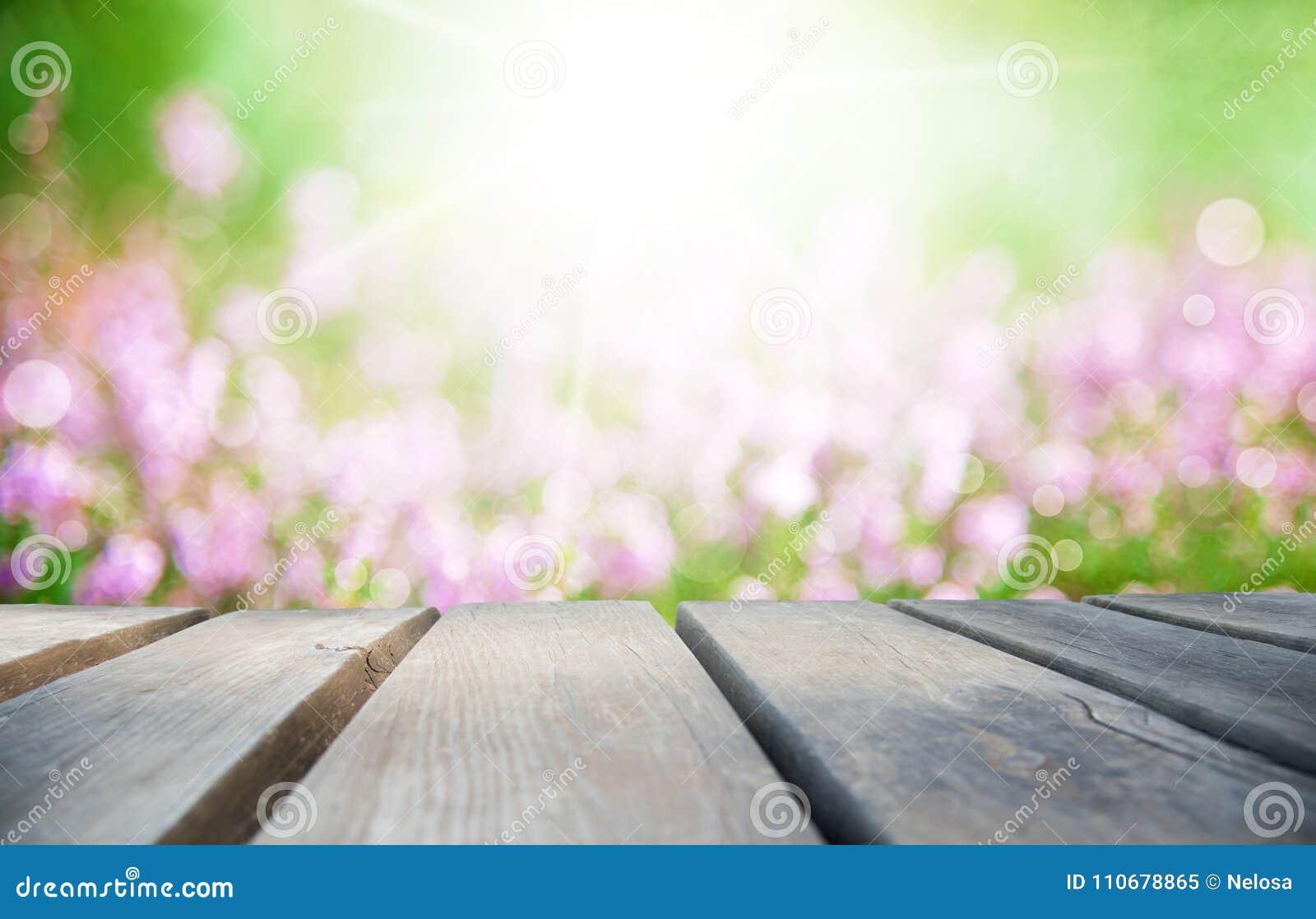 Деревянная доска с солнечным полем цветка Эрики как предпосылка