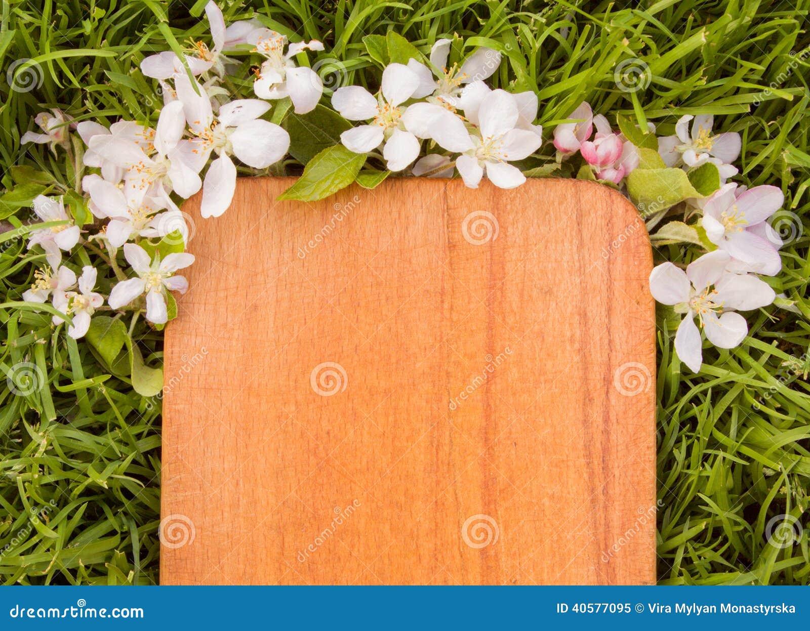 Деревянная доска и ветвь цветка яблони