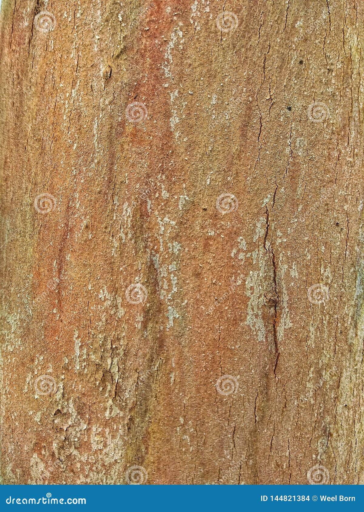 Деревянная текстура пола