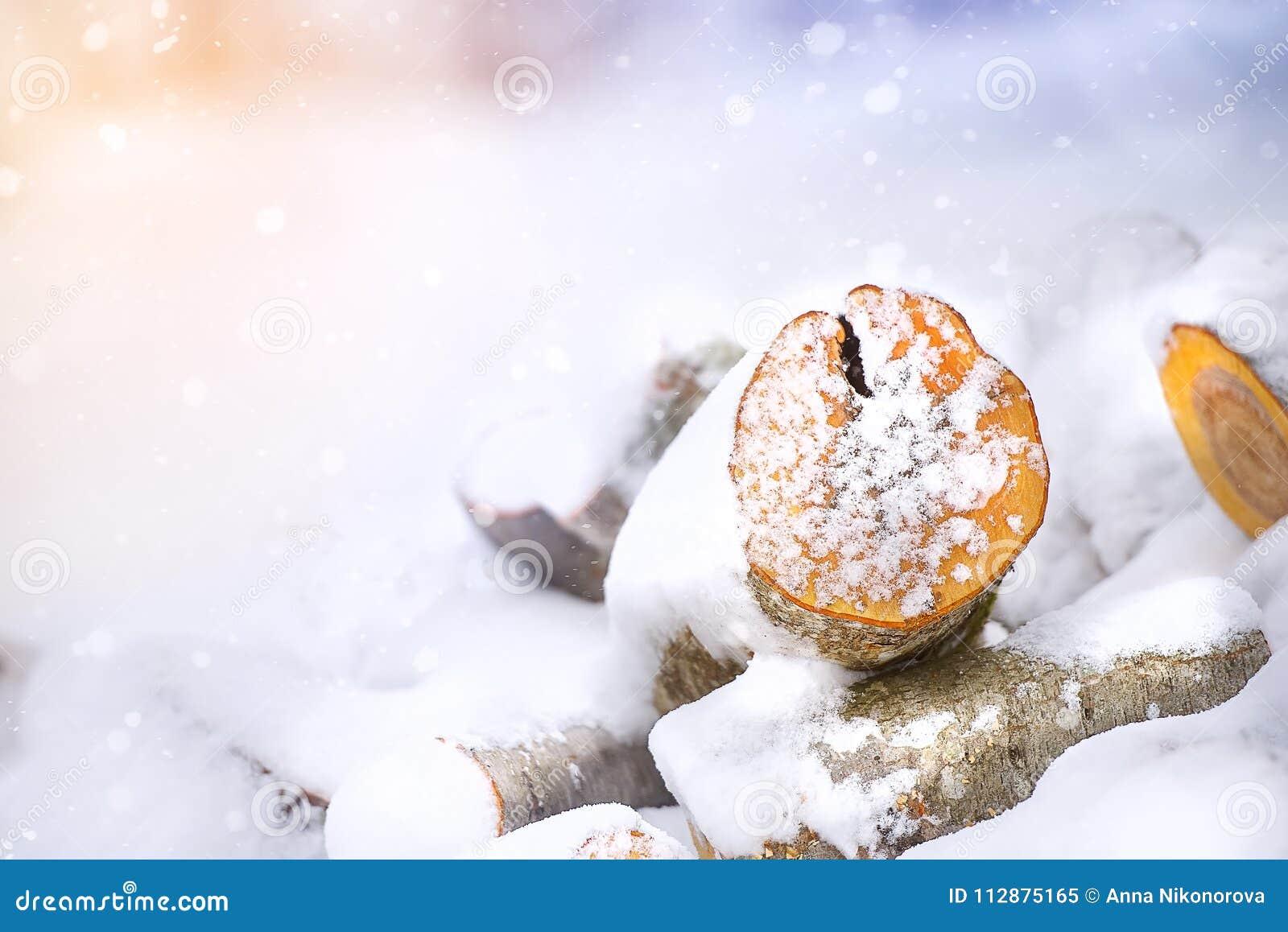 Деревянный вносит дальше снег в журнал зимы