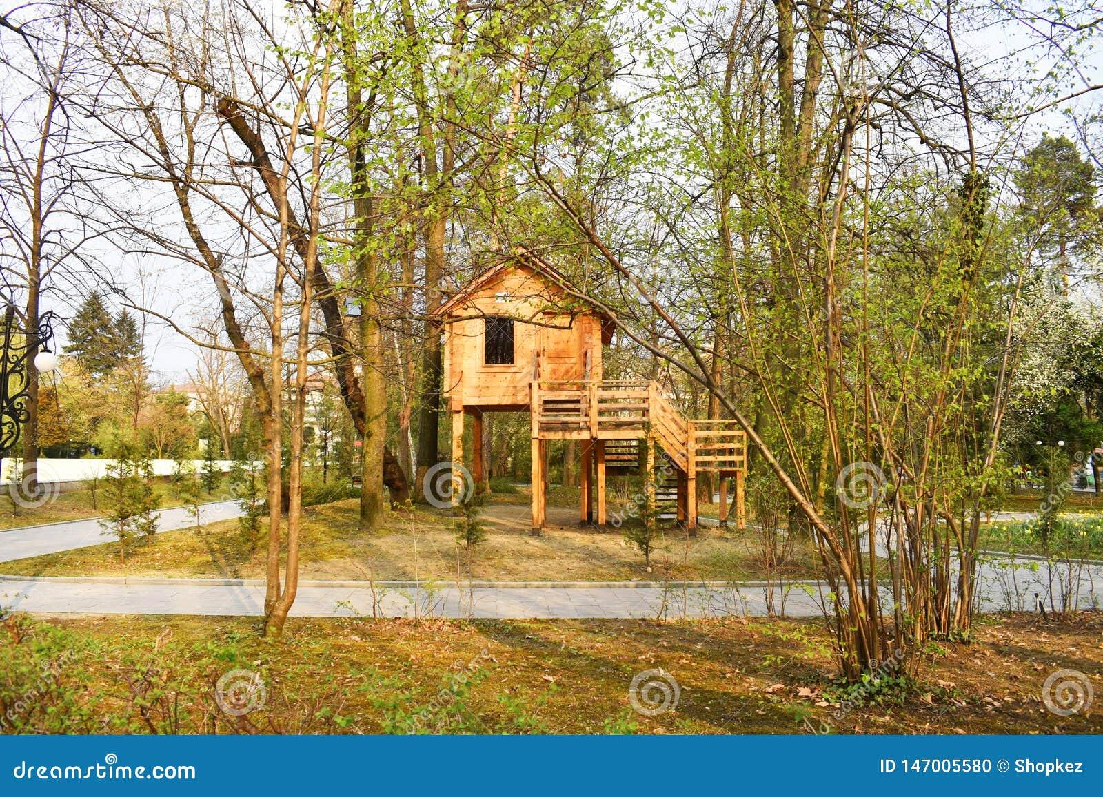 Деревянный дом в парке города