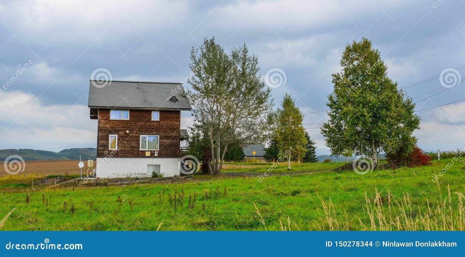 Деревянный дом на сельской местности