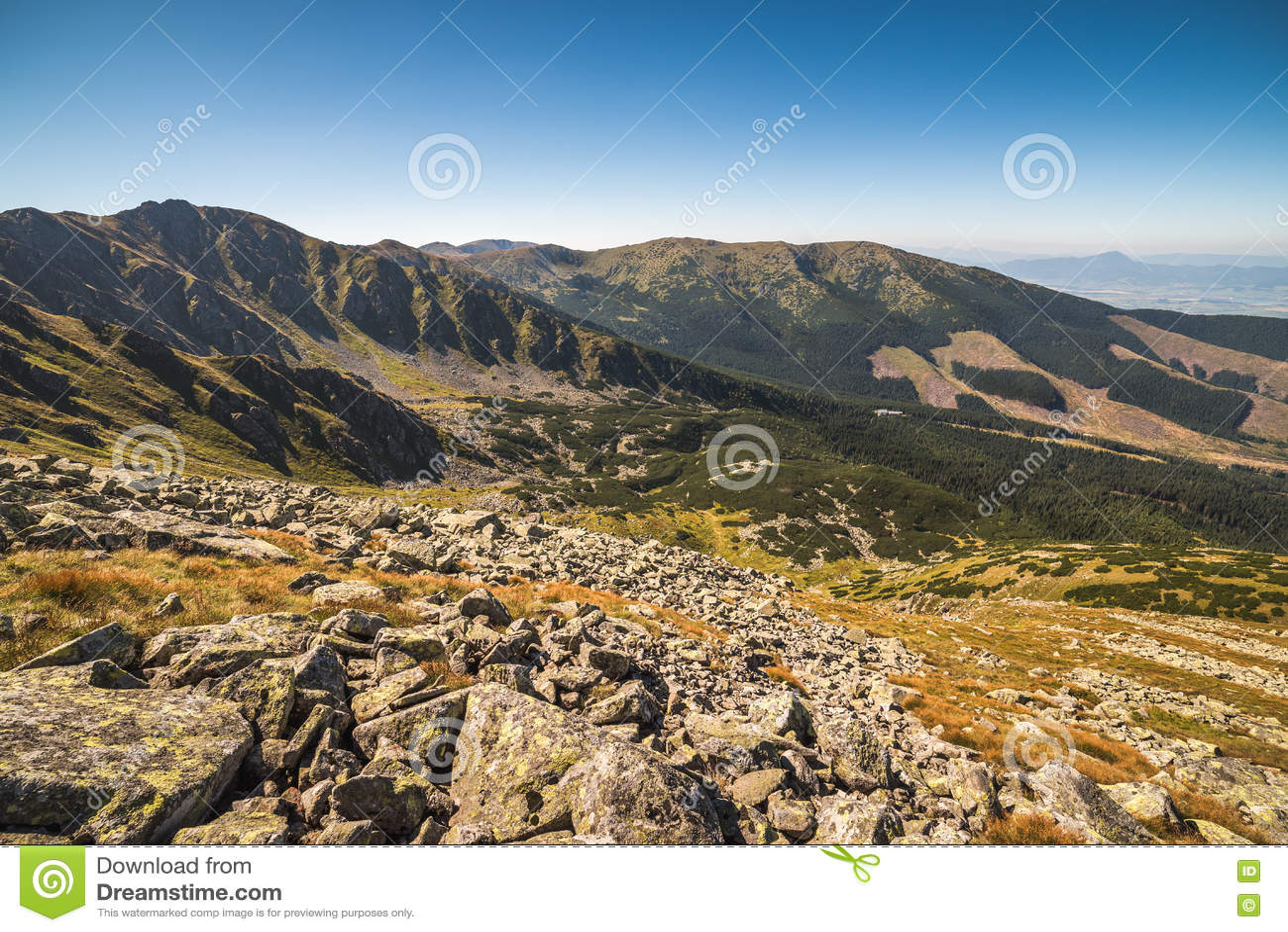 Держатель Derese, низкое Tatras, Словакия