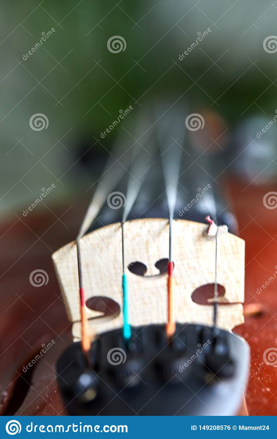 Деталь скрипки Выборочный фокус с малой глубиной