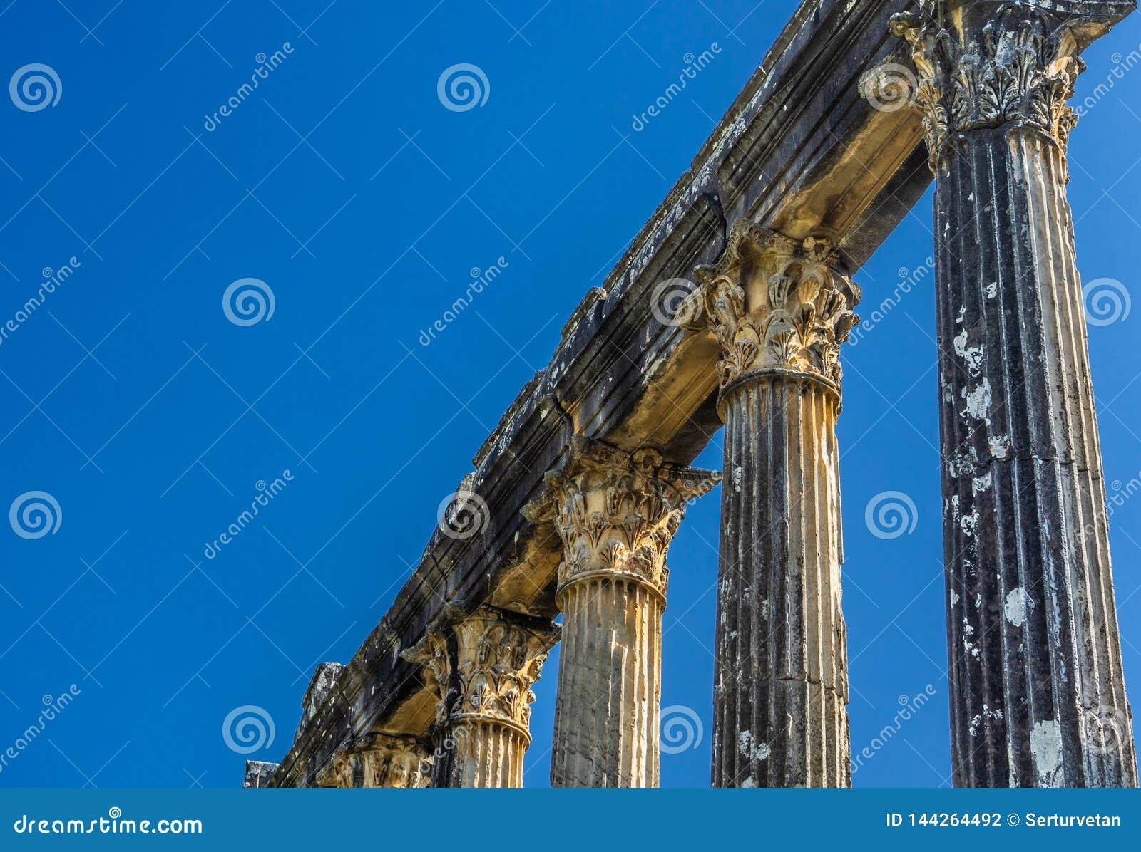 Деталь Architrave и столбца от Euromos - Euromus