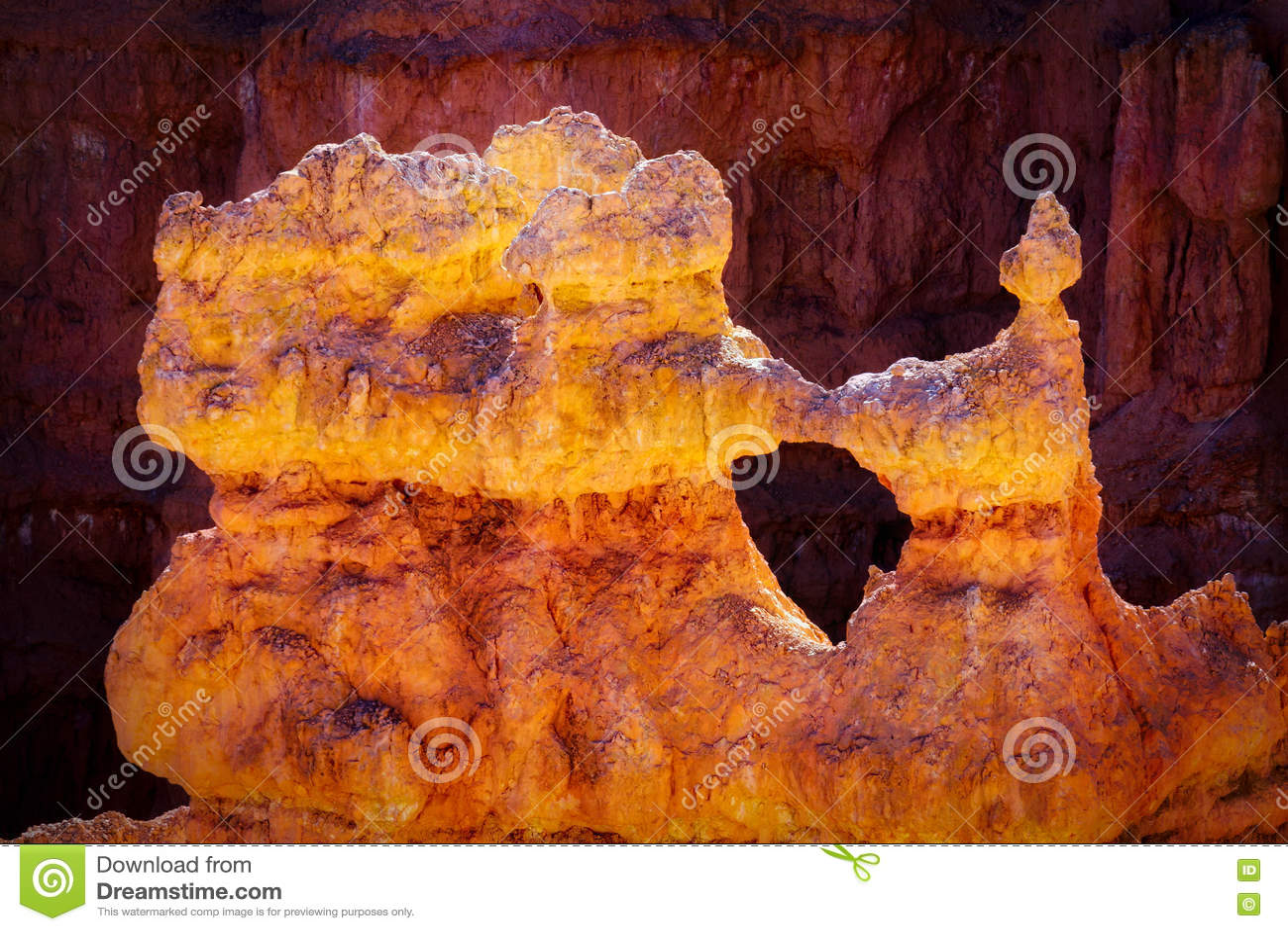 Деталь от каньона Bryce