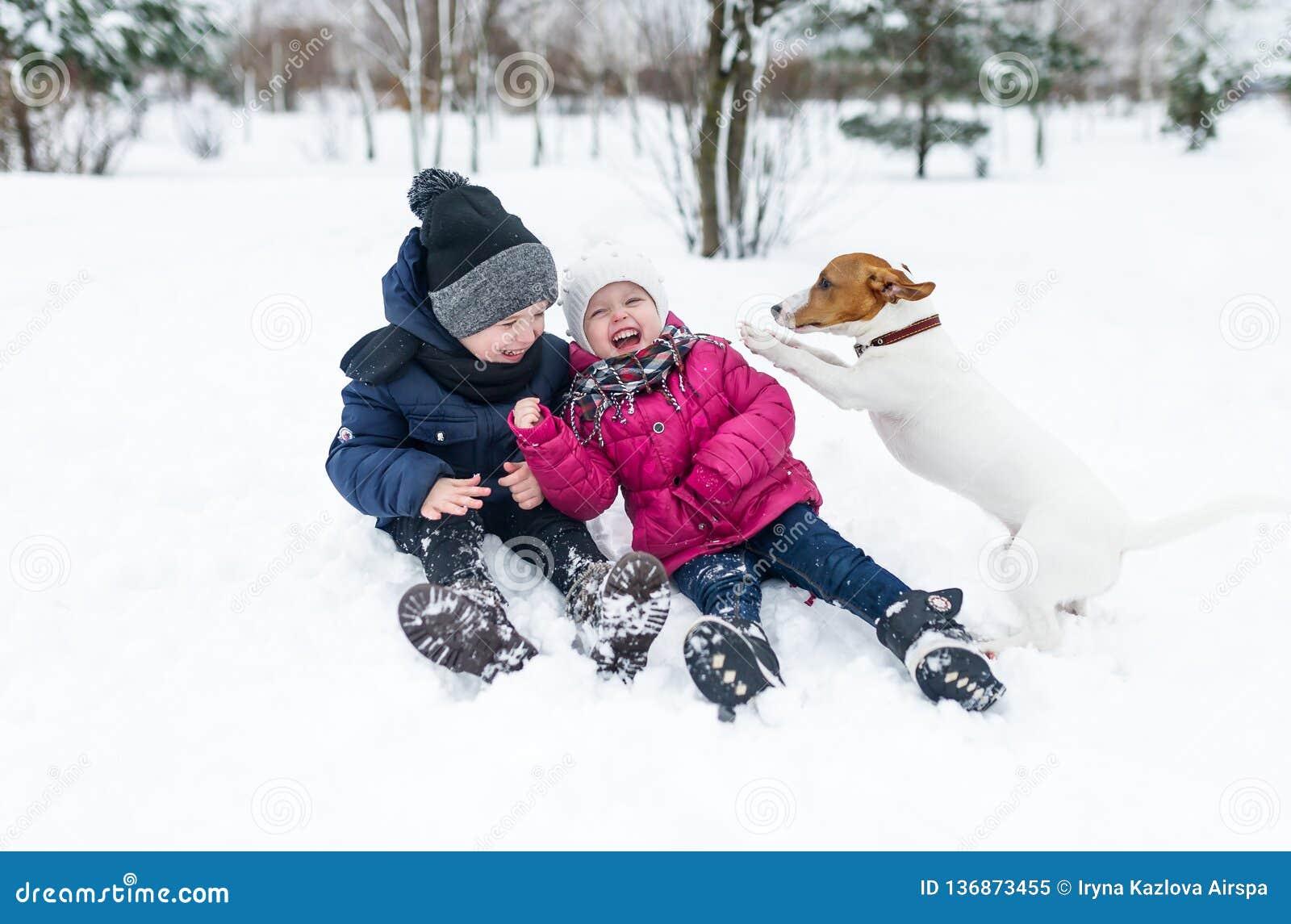 Дети играя с щенком терьера Джек Рассела в парке в зиме в снеге