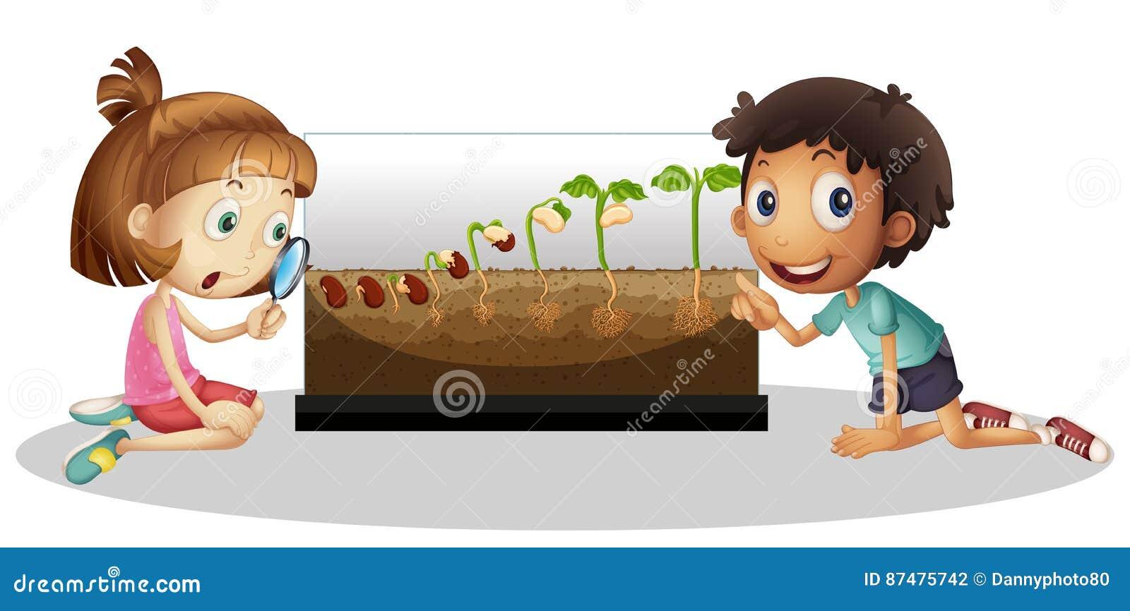 Дети смотря расти завода