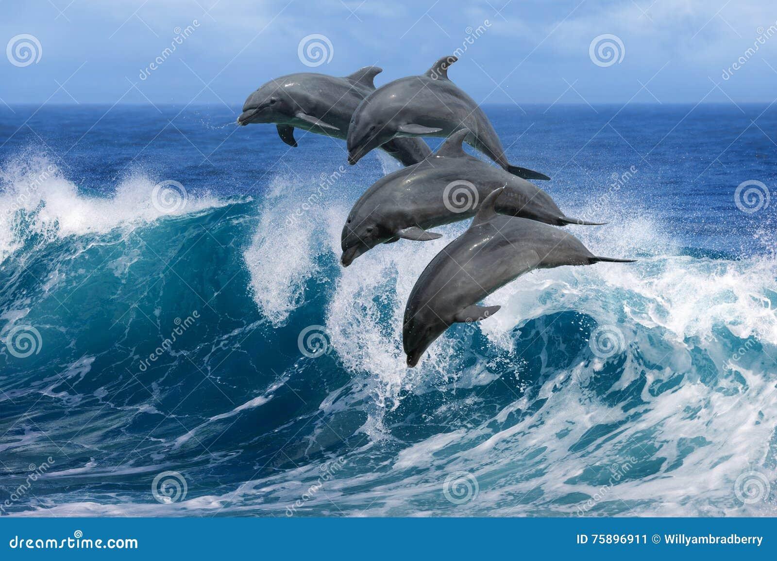 Дельфины скача над волнами