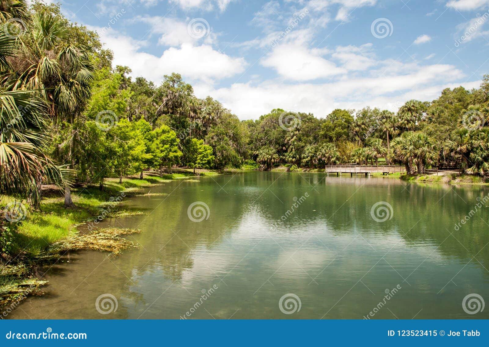 Джемини скачет парк в Флориде