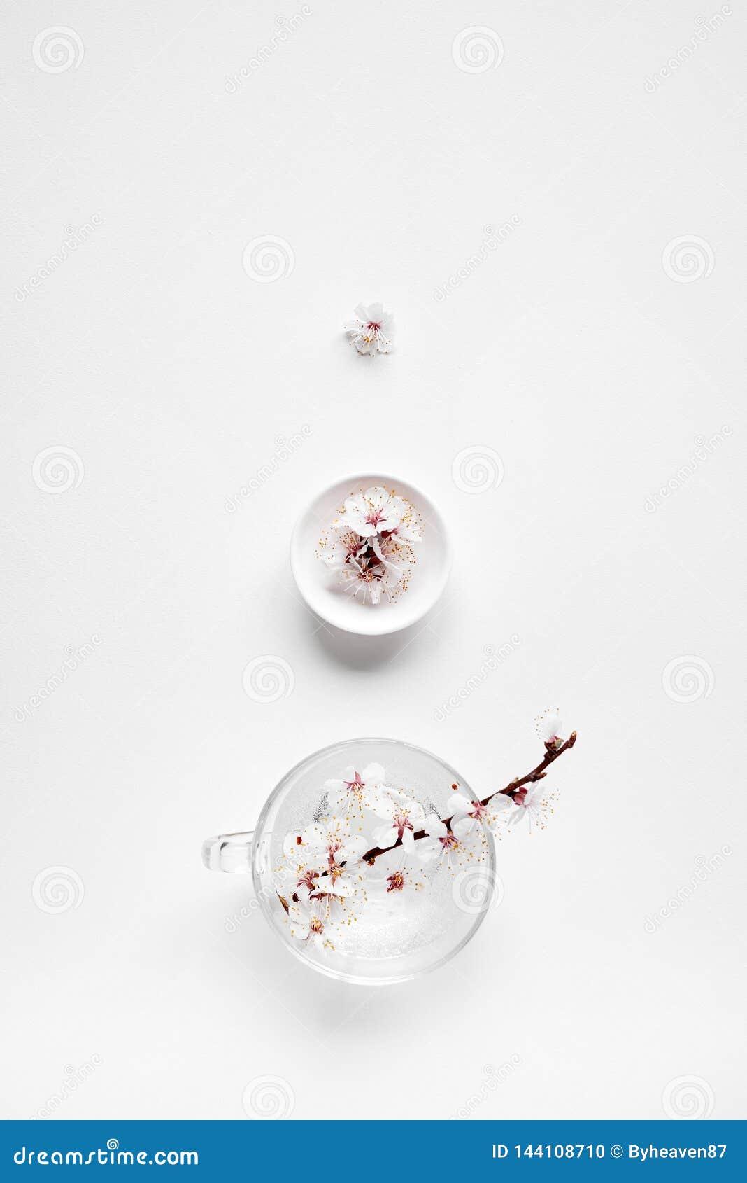 Дзэн белых цветков minimalistic на белизне