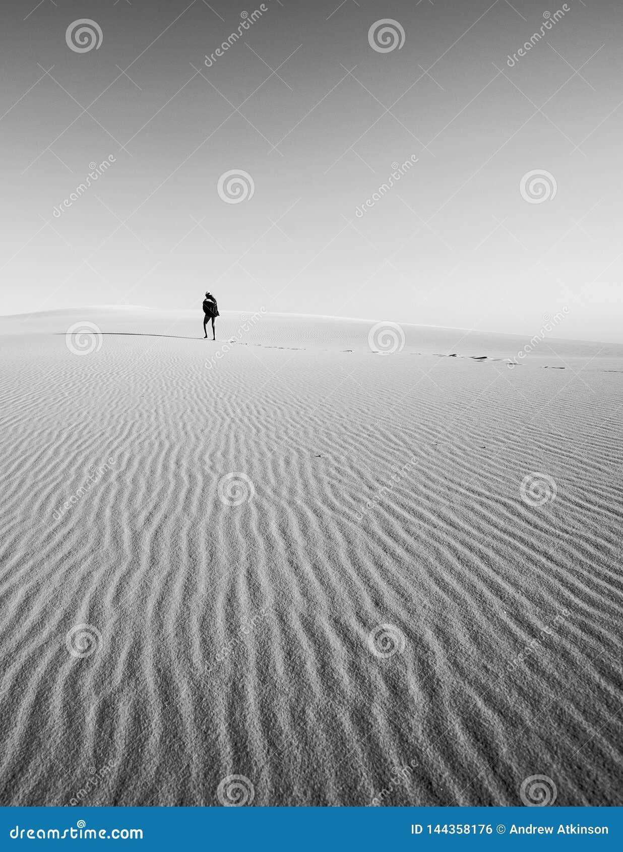 Диаграмма потеряла в песчанных дюнах идя в расстояние самостоятельно