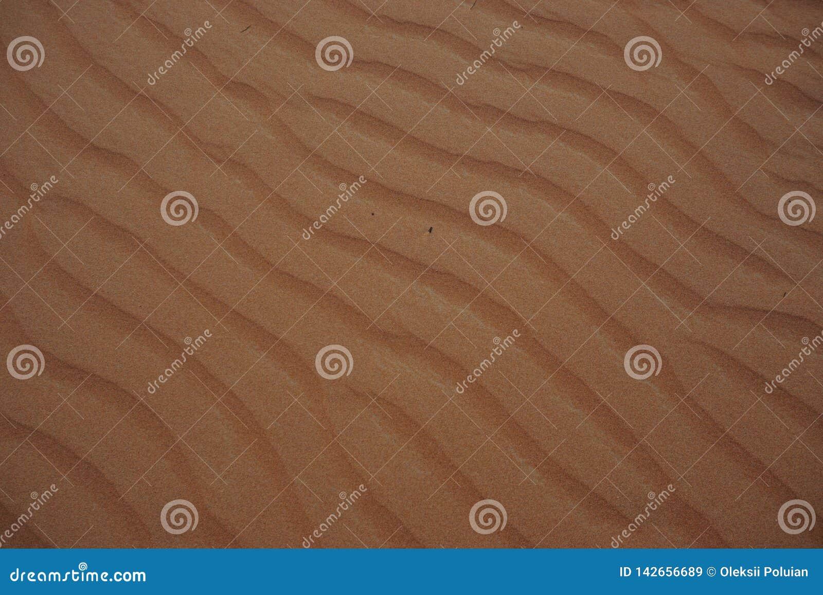 Дизайн ландшафта пустыни Дубай