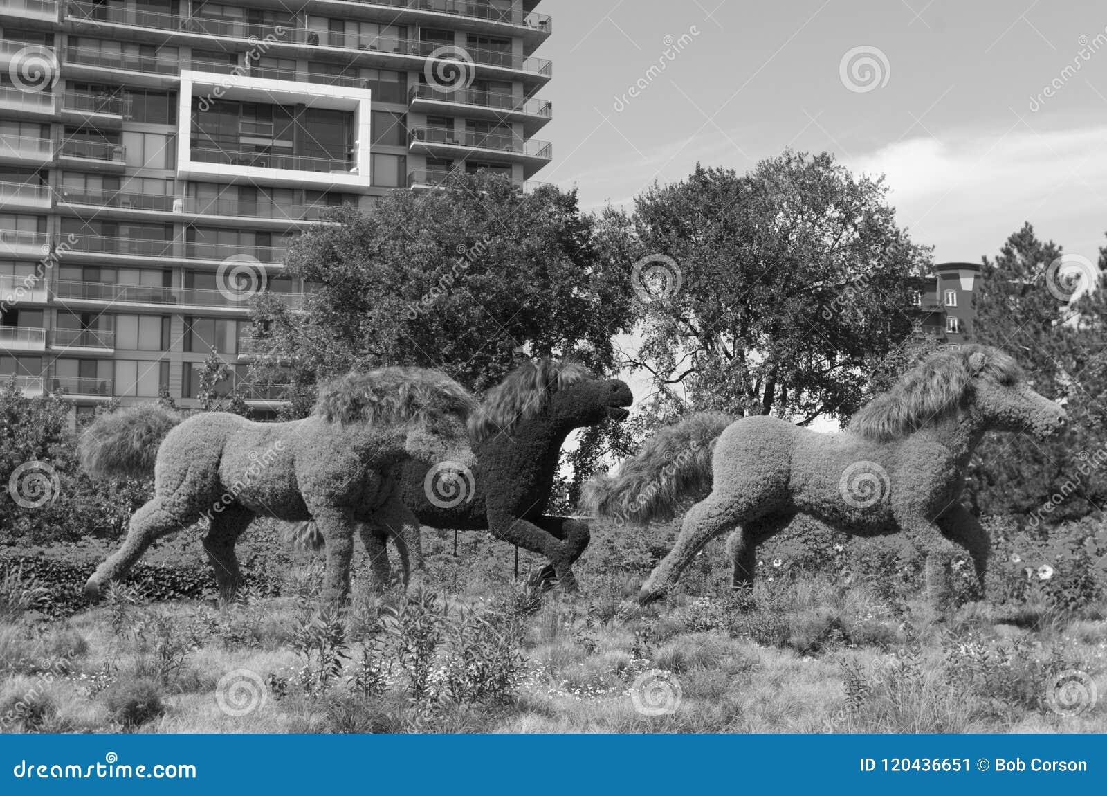 Дисплей MosaïCanada 150 лошадей