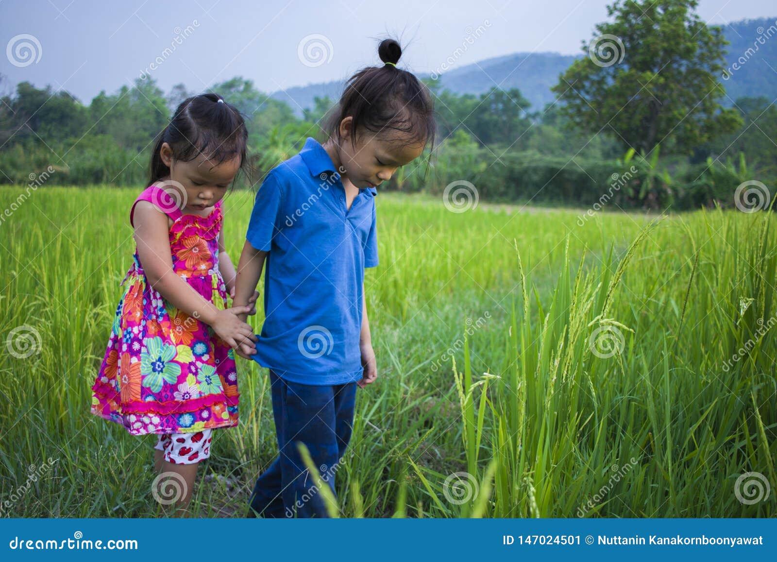Длинный мальчик и маленькая девочка волос играя в поле риса и девушка она вспугнула грязное