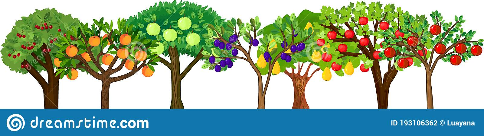 trunk-clipart-apple-tree-17.jpg 1,115×1,300 pixels   Tree drawing simple,  Apple tree drawing, Blossom tree tattoo