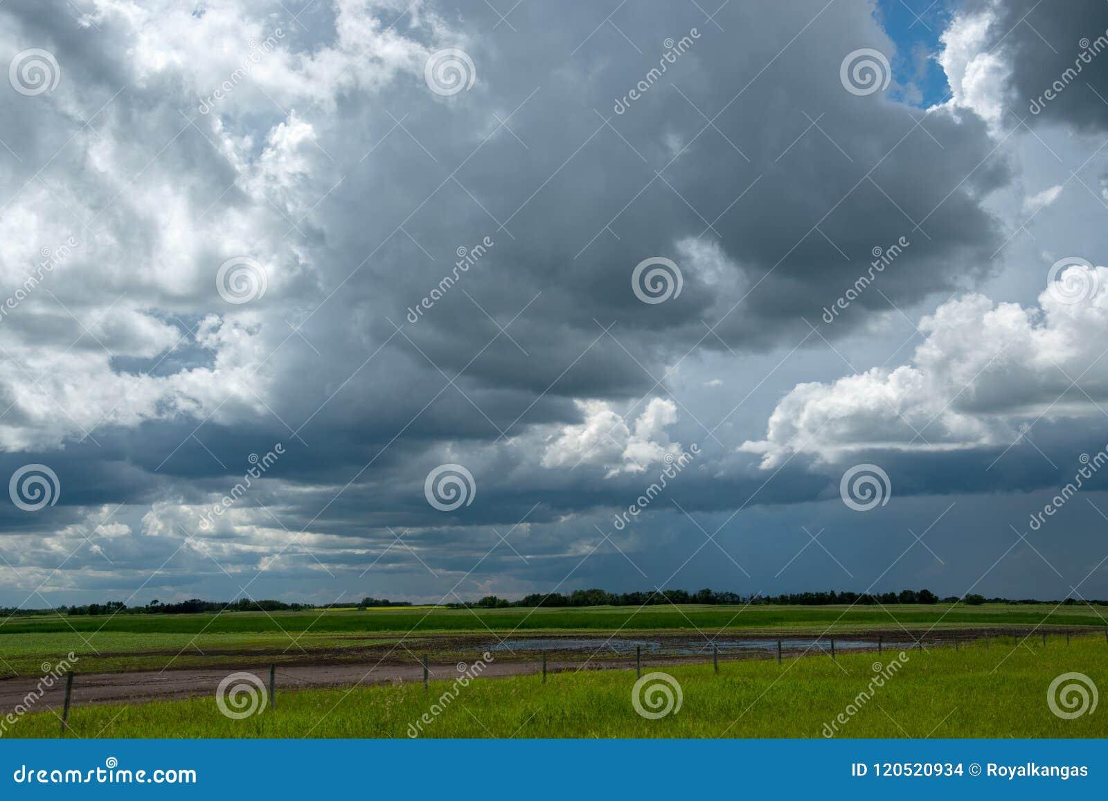 Дождевые облако причаливая над обрабатываемой землей, Саскачеваном, Канадой