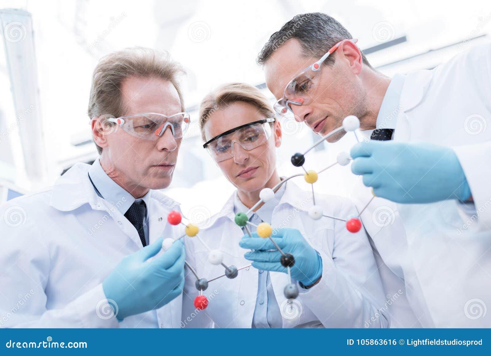Доктора рассматривая молекулярную модель