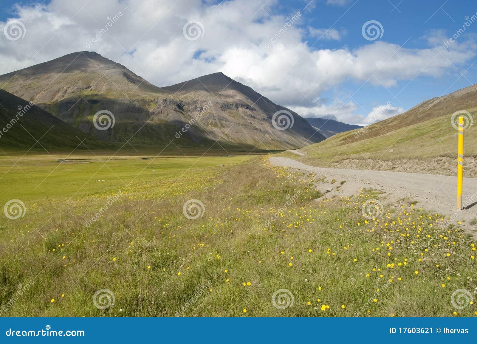 долина дороги Исландии вулканическая