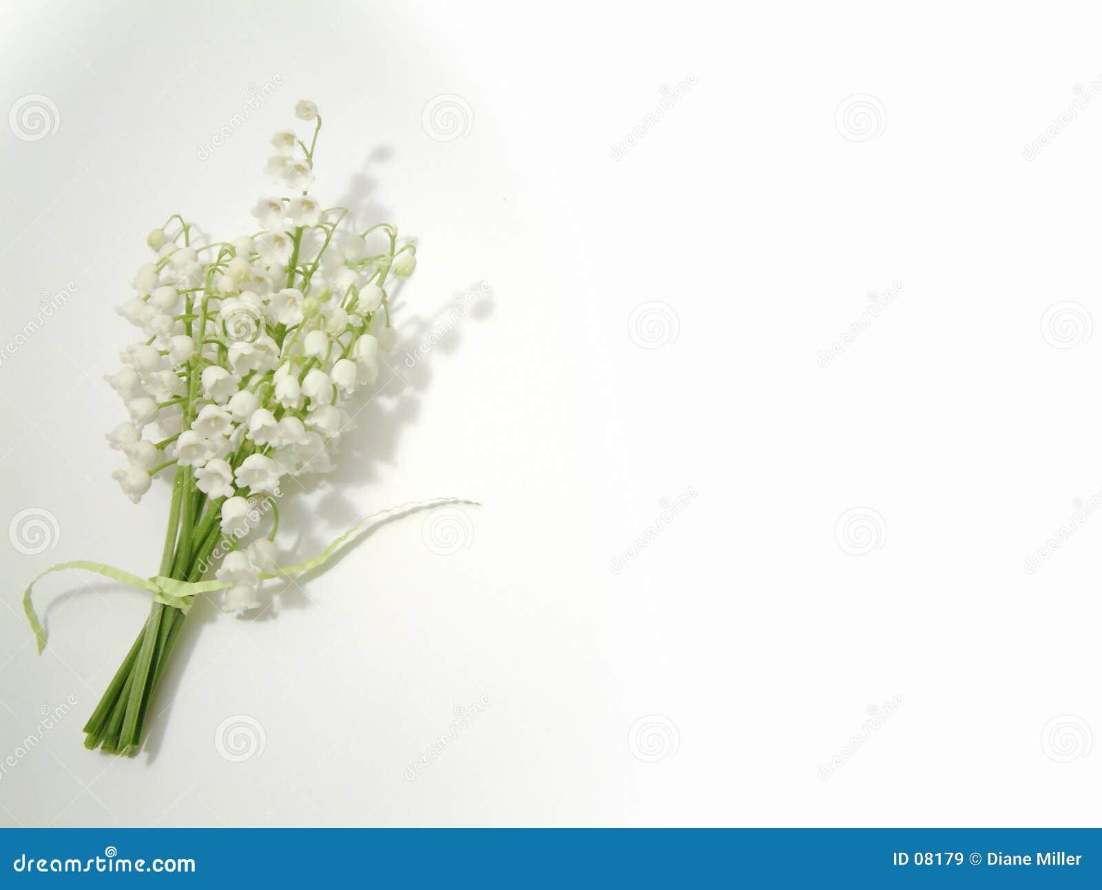 долина лилии