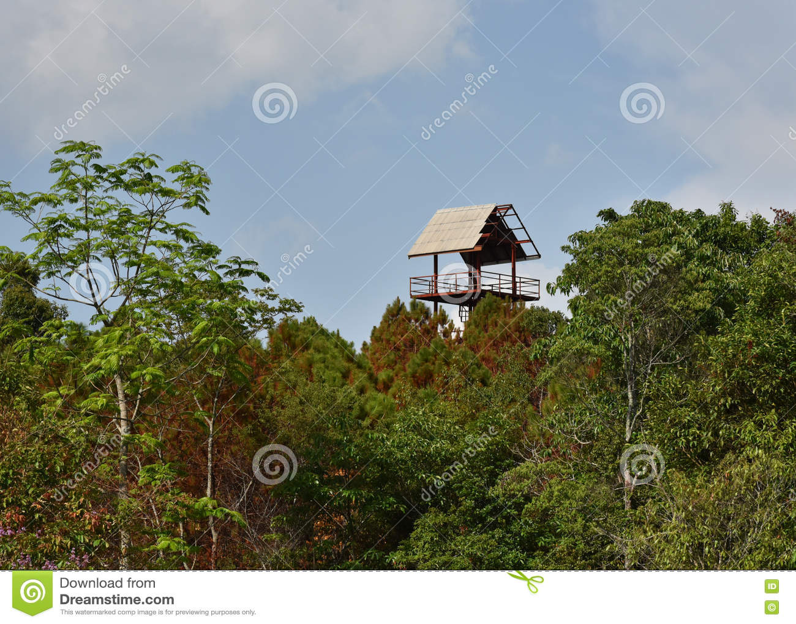 Download Дом лесного дерева башни иллюстрация штока. иллюстрации насчитывающей ландшафт - 72285869