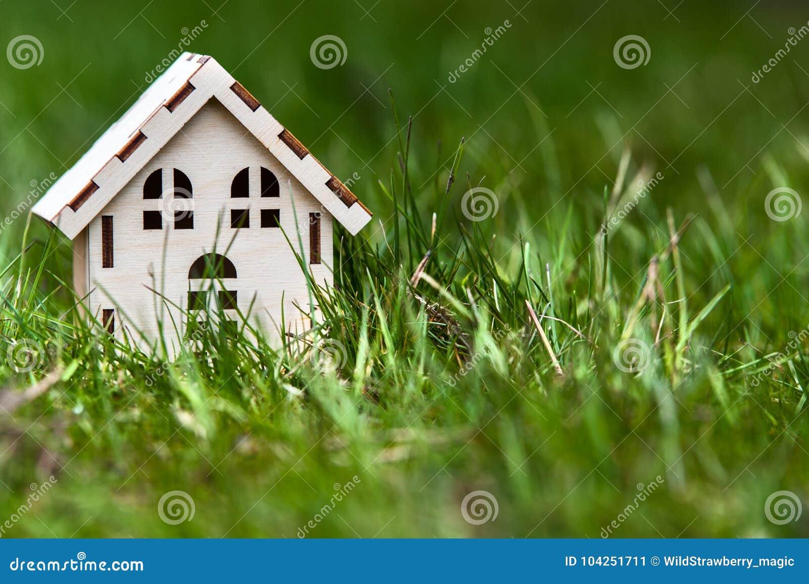 Дом игрушки в зеленой траве