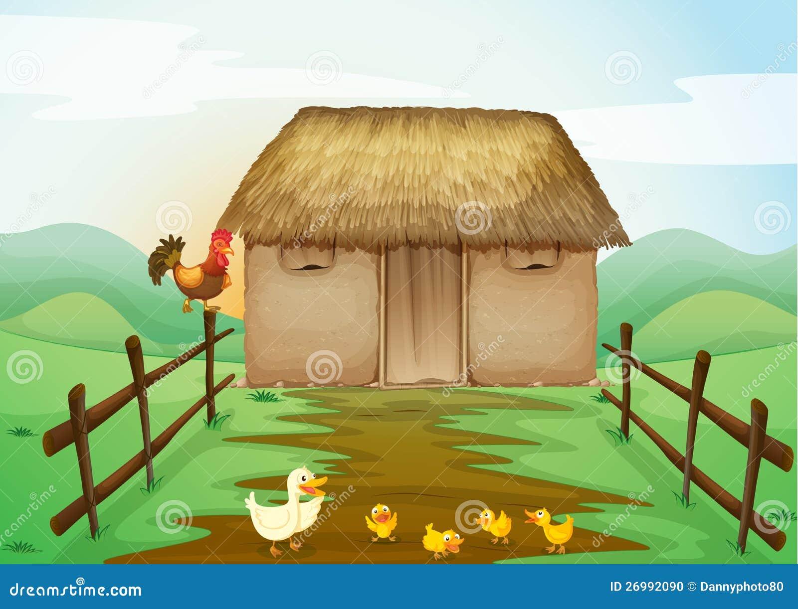 Дом и утки