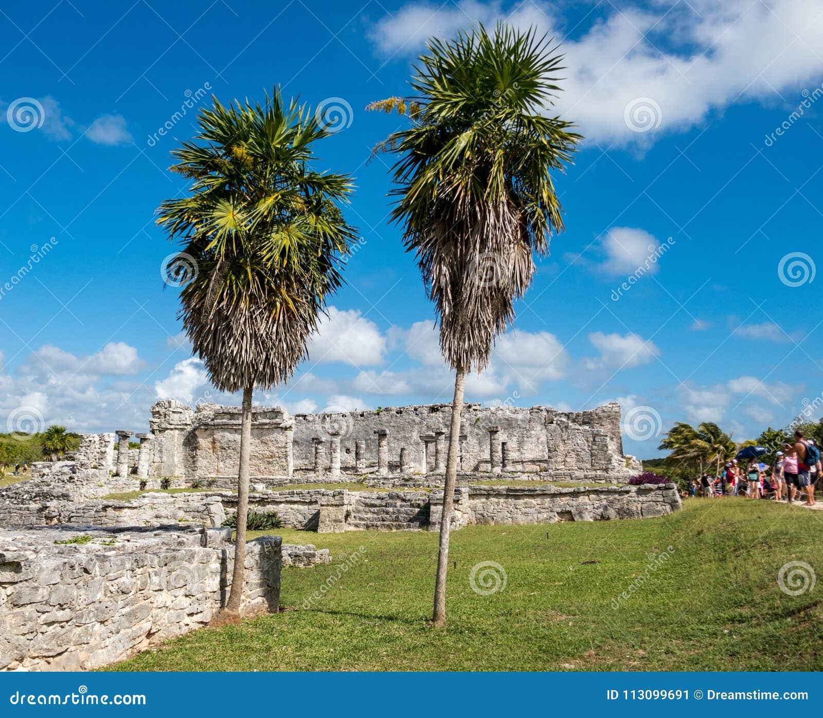 Дом столбцов с 2 высокорослыми пальмами на старых майяских руинах Tulum в Мексике