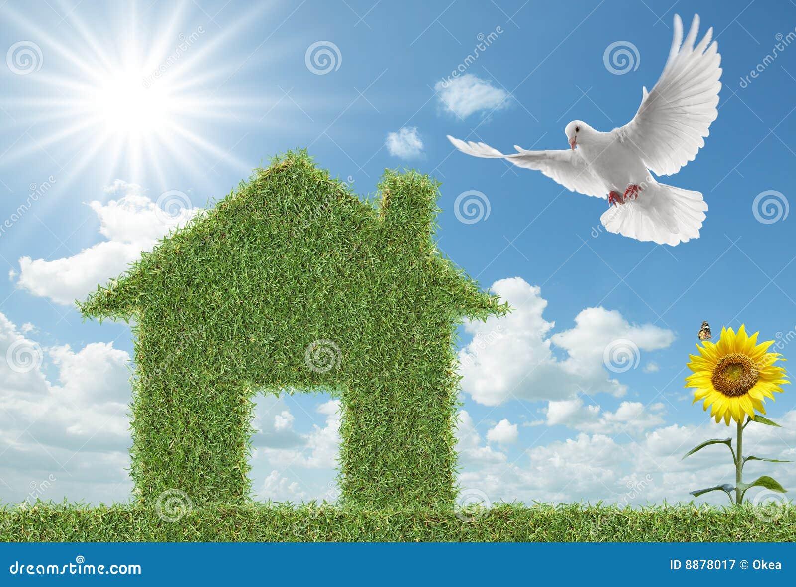 дом травы dove зеленая