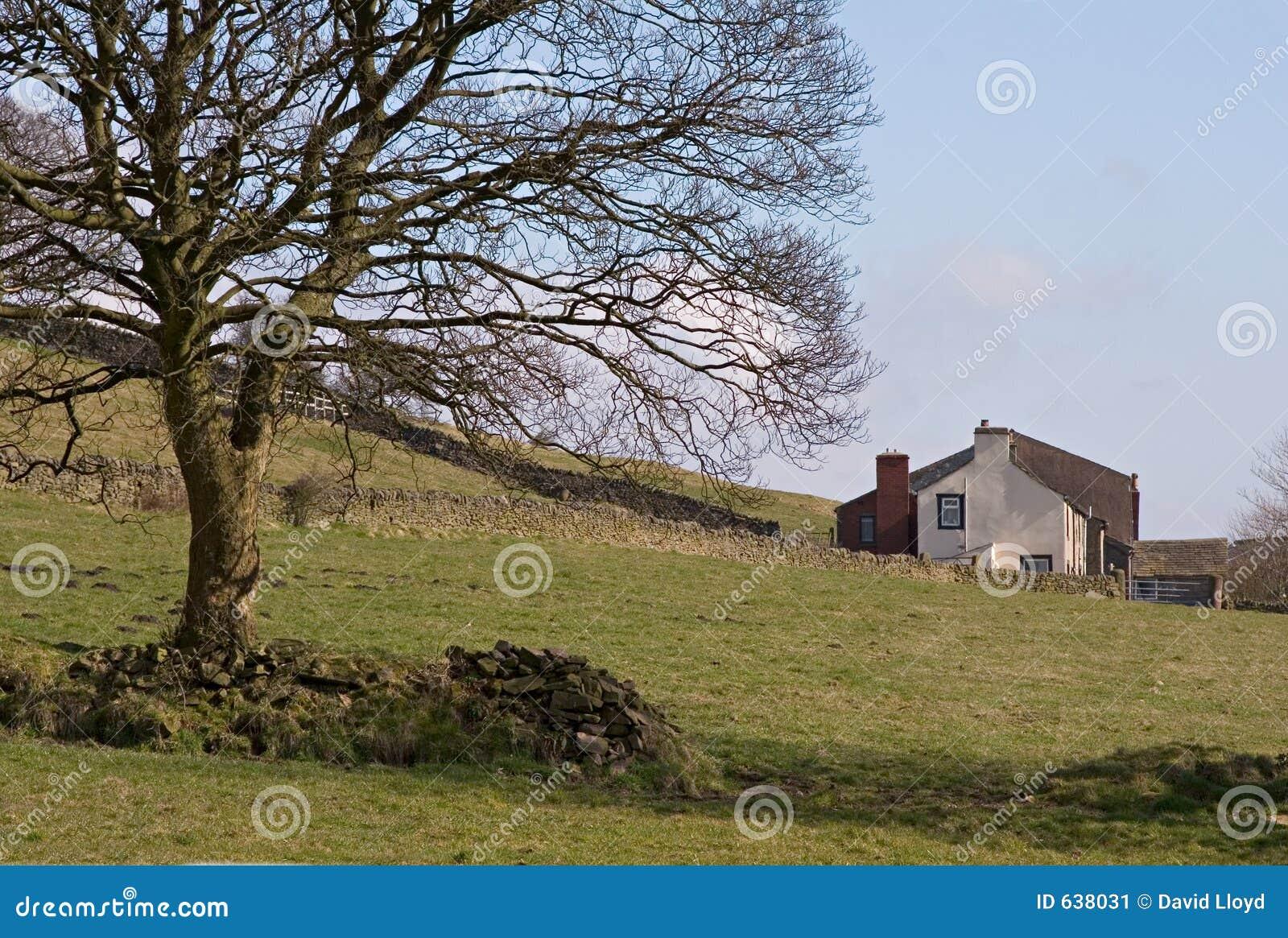 Download дом фермы стоковое изображение. изображение насчитывающей сух - 638031