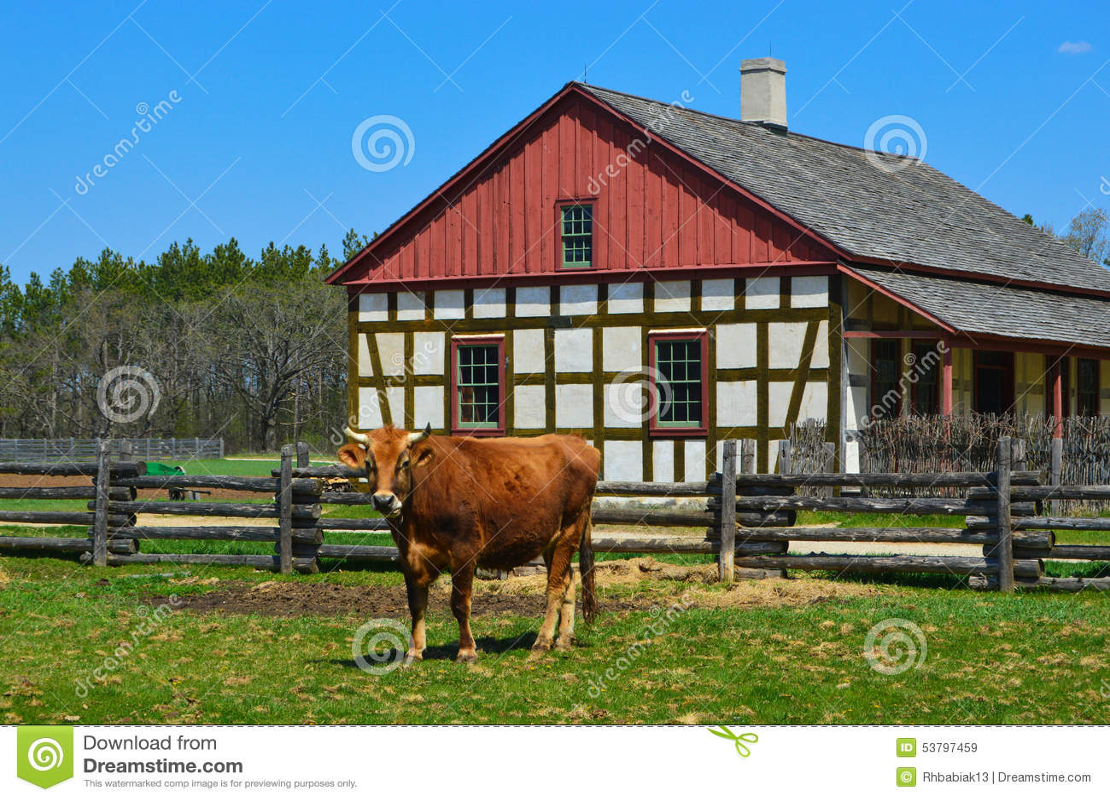 Дом фермы Schultz коровы исторический
