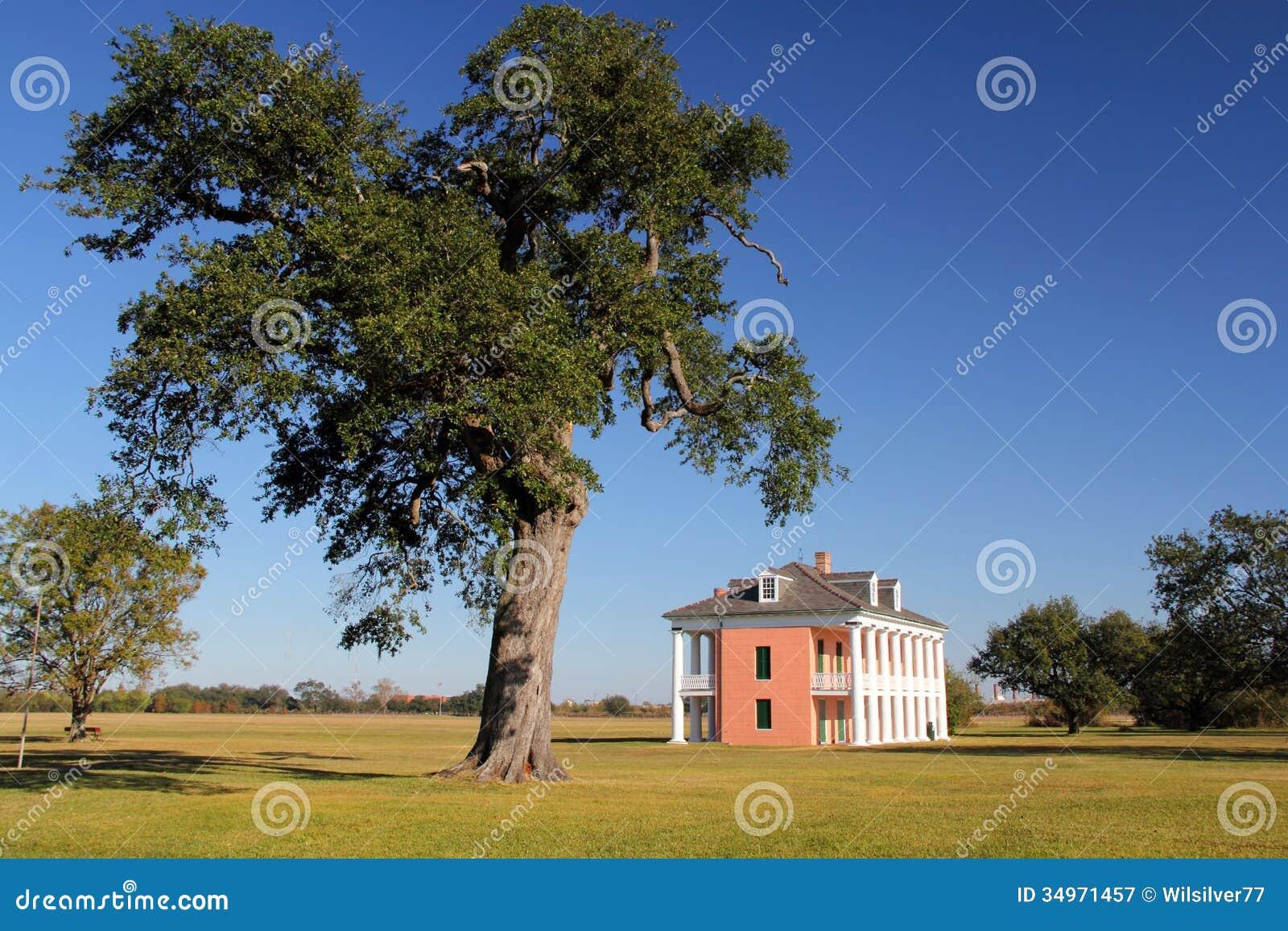 Дом яблони-Beauregard
