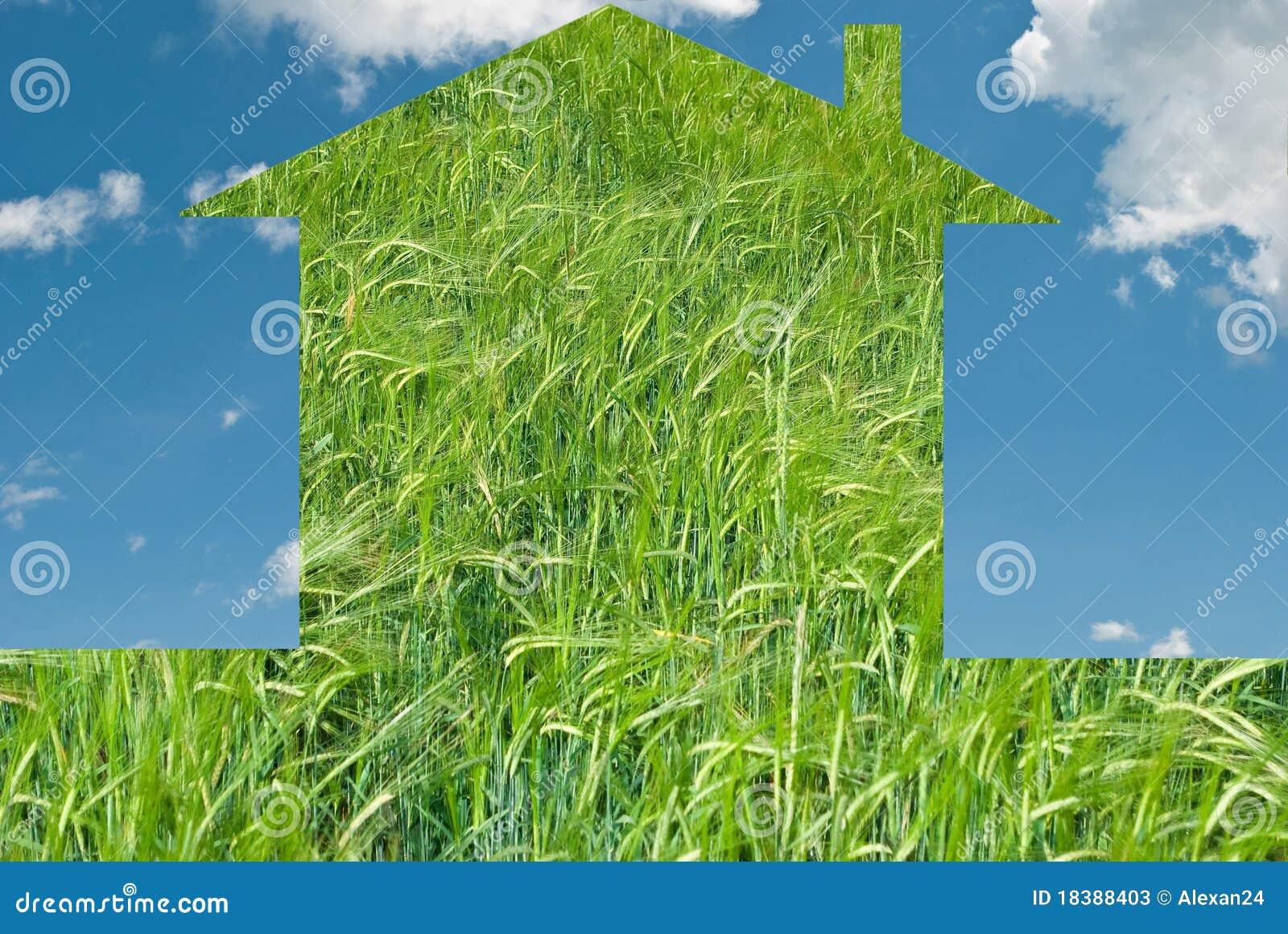 дом eco принципиальной схемы