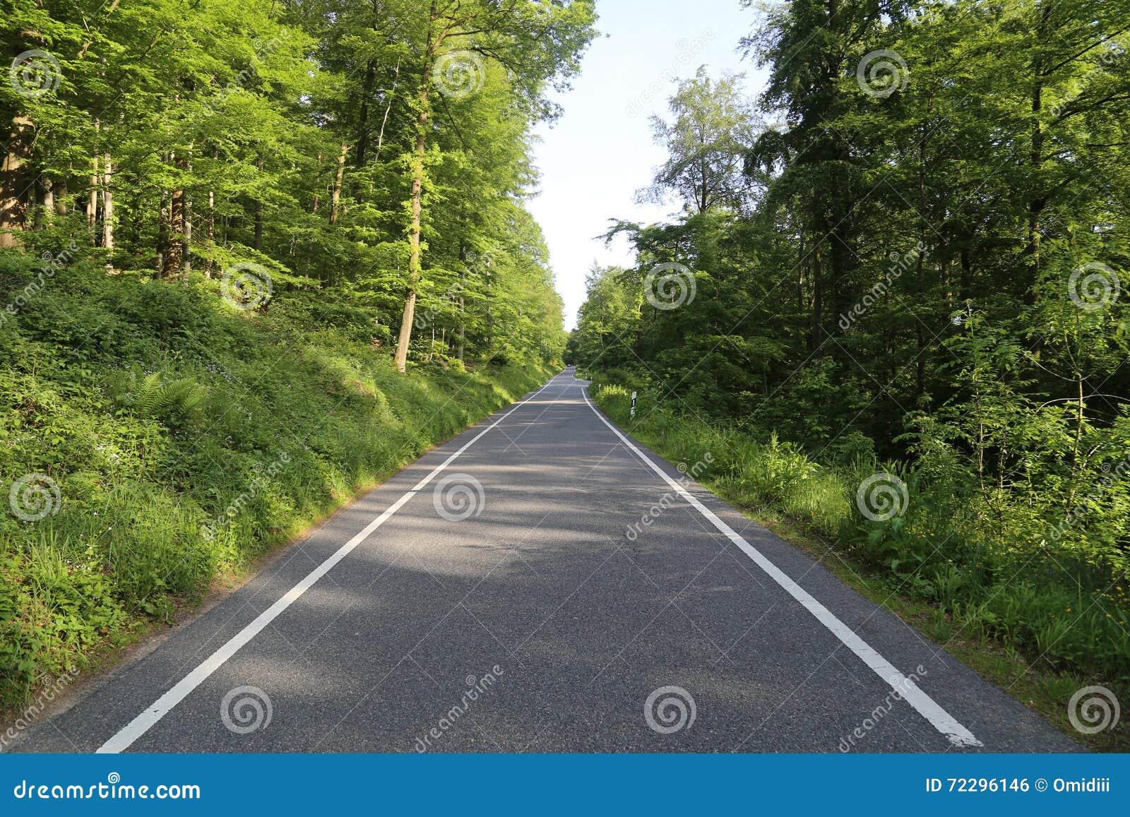 Download Дорога в пуще лета стоковое фото. изображение насчитывающей freeway - 72296146
