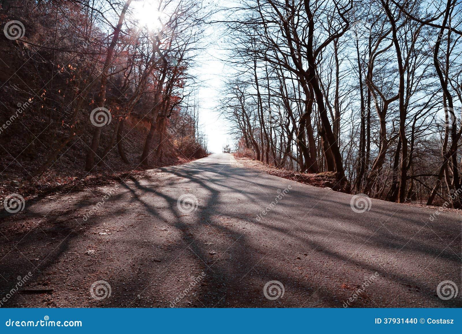 Дорога горы