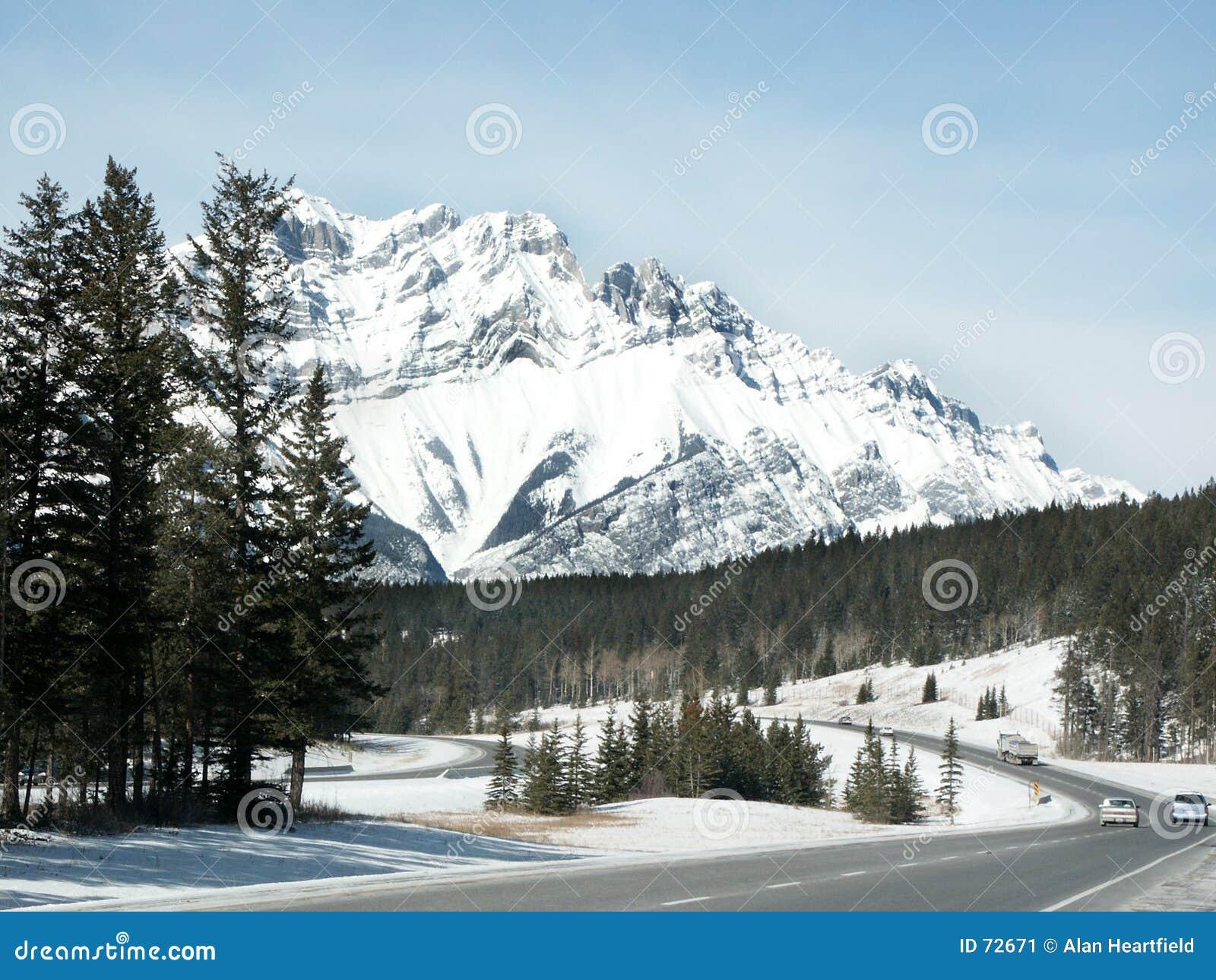дорога западная