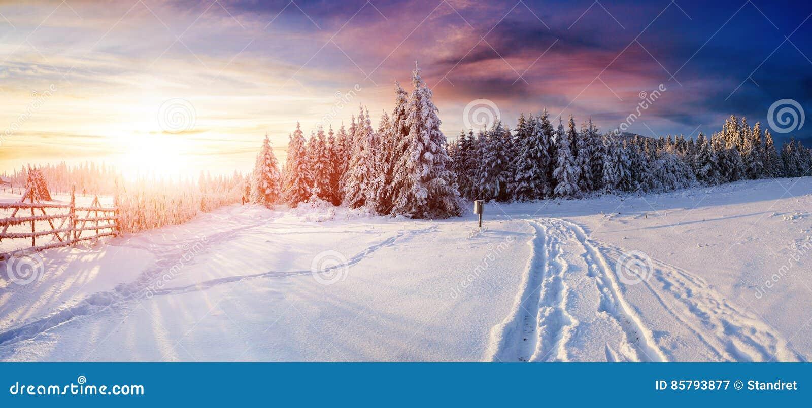 Дорога зимы