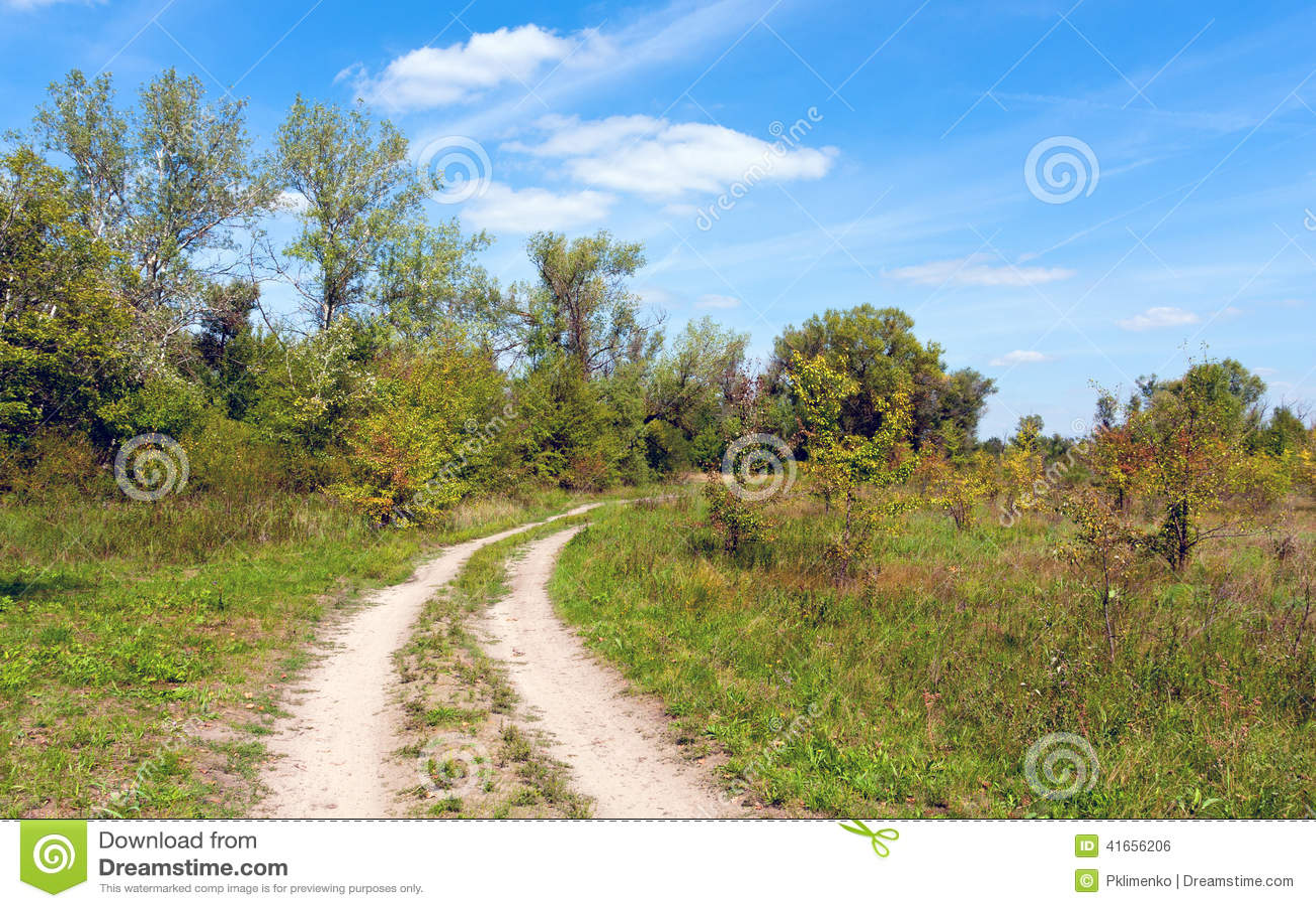 Дорога колейности в степи