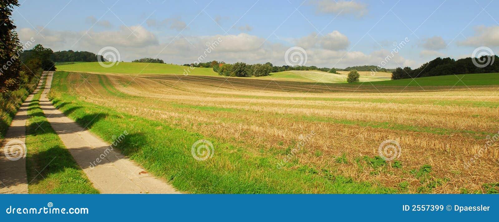 дорога поля страны открытая