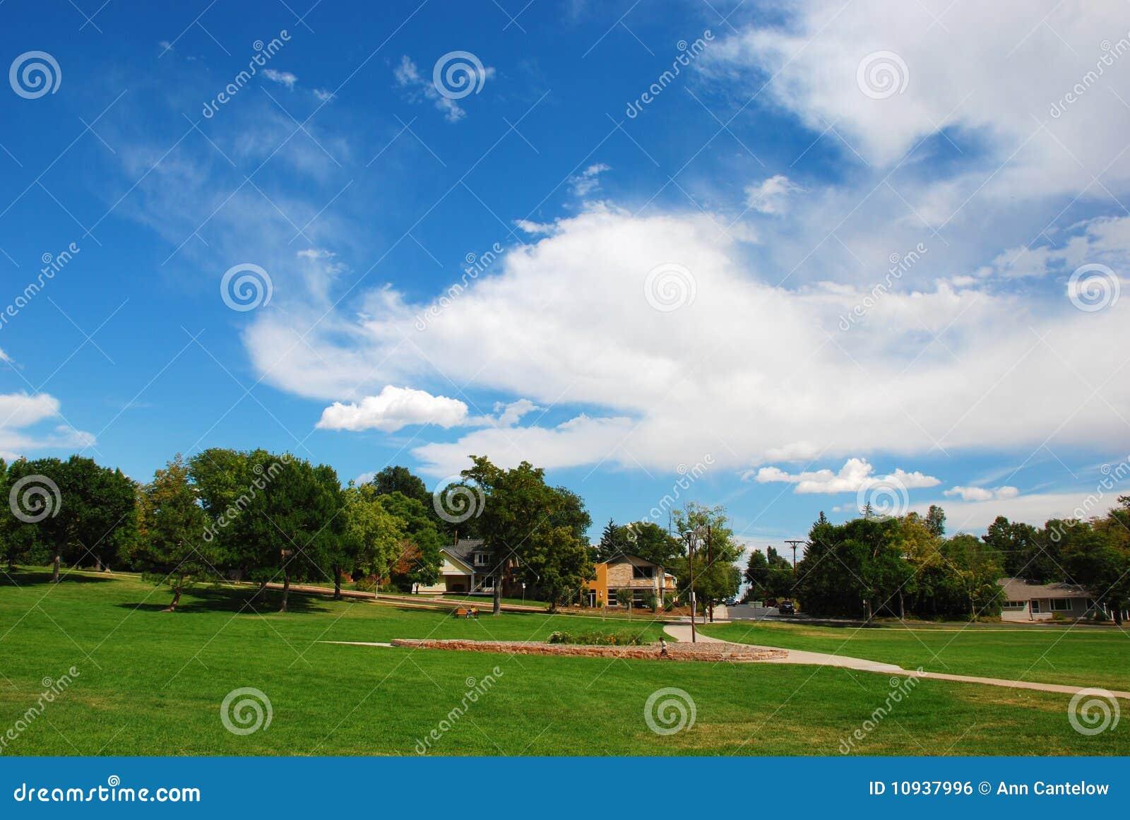 драматическое небо парка