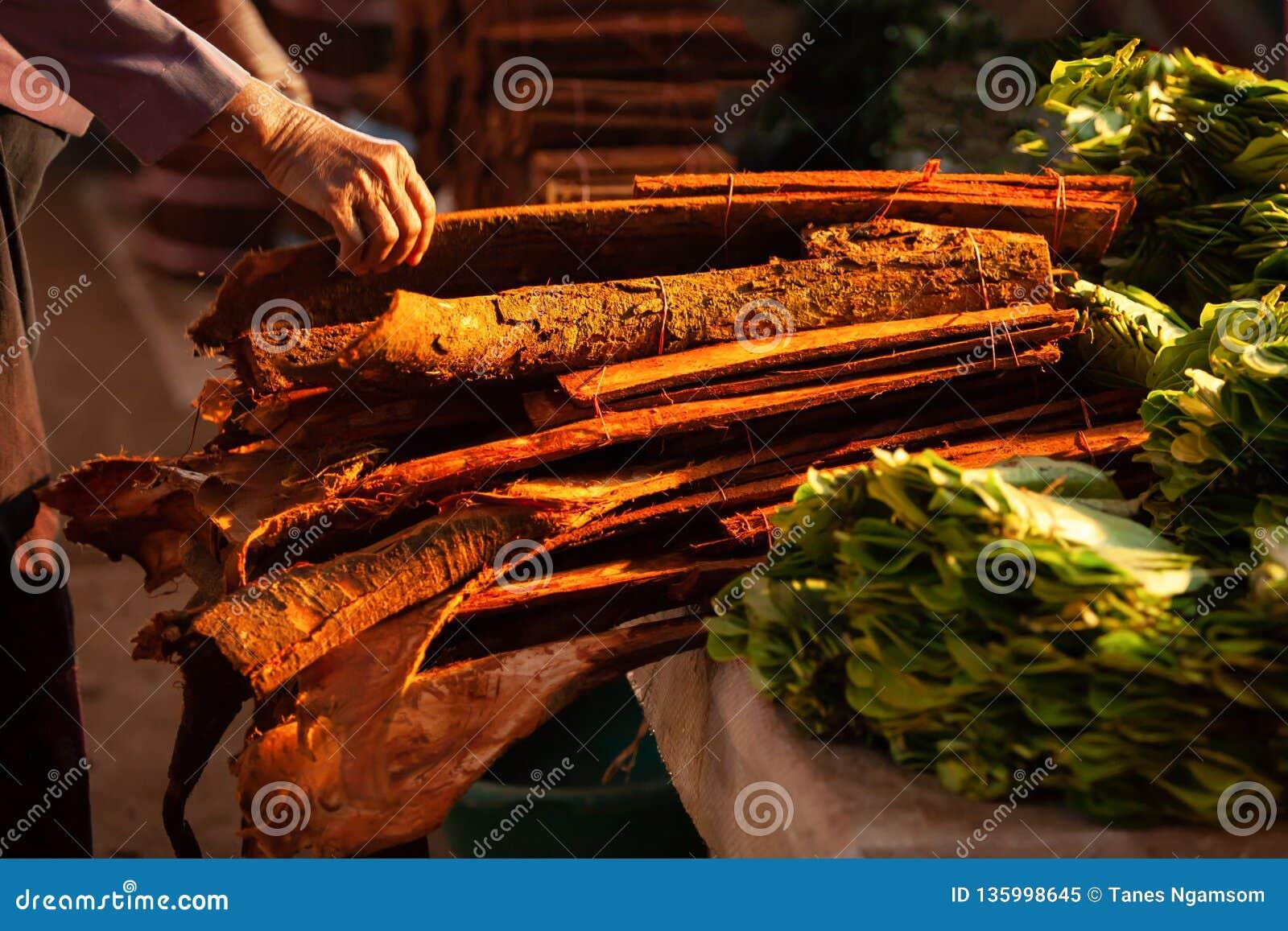 Древесина и Betle циннамона на местном рынке в утре Pakse, Champasak, Лаос Теплый тон красивейший свет Мелкий dept