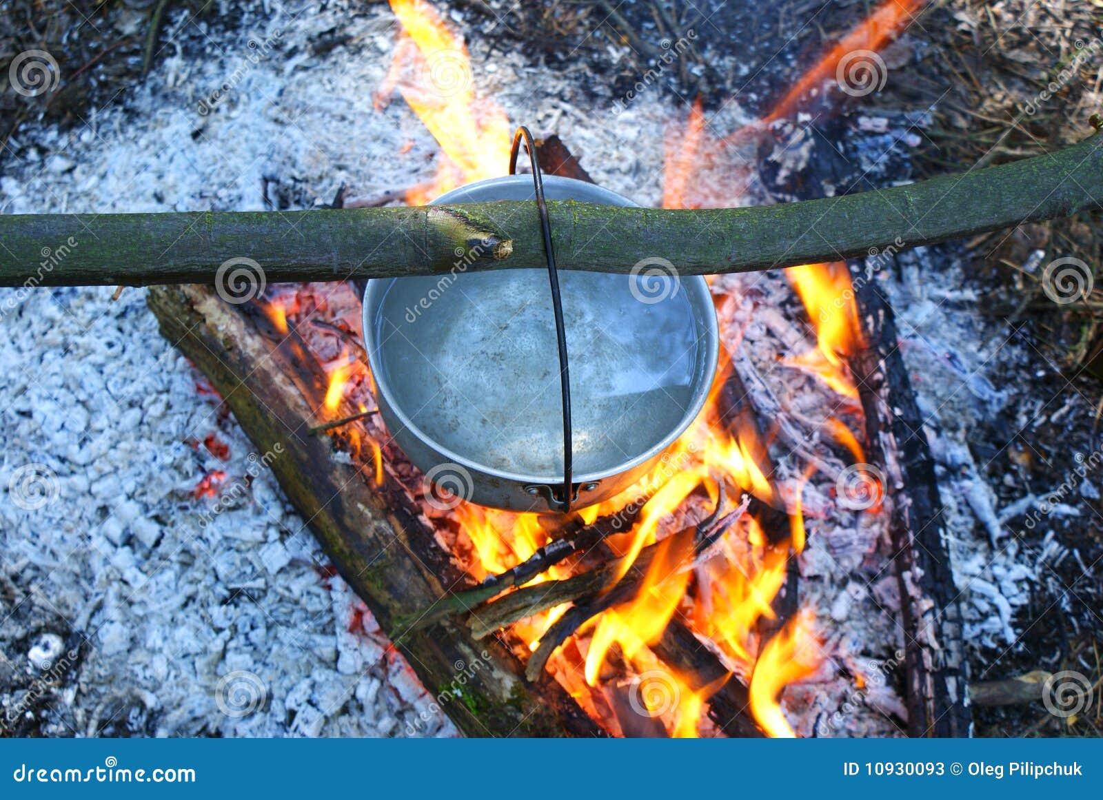 древесина лагерного костера