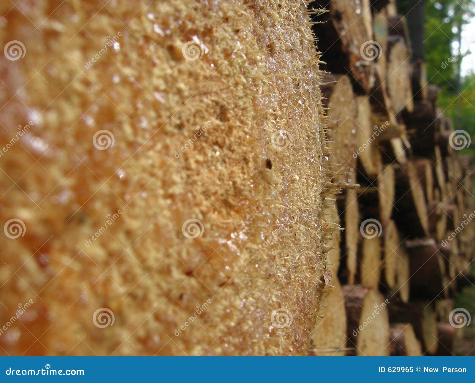 Download древесина стоковое изображение. изображение насчитывающей стог - 629965