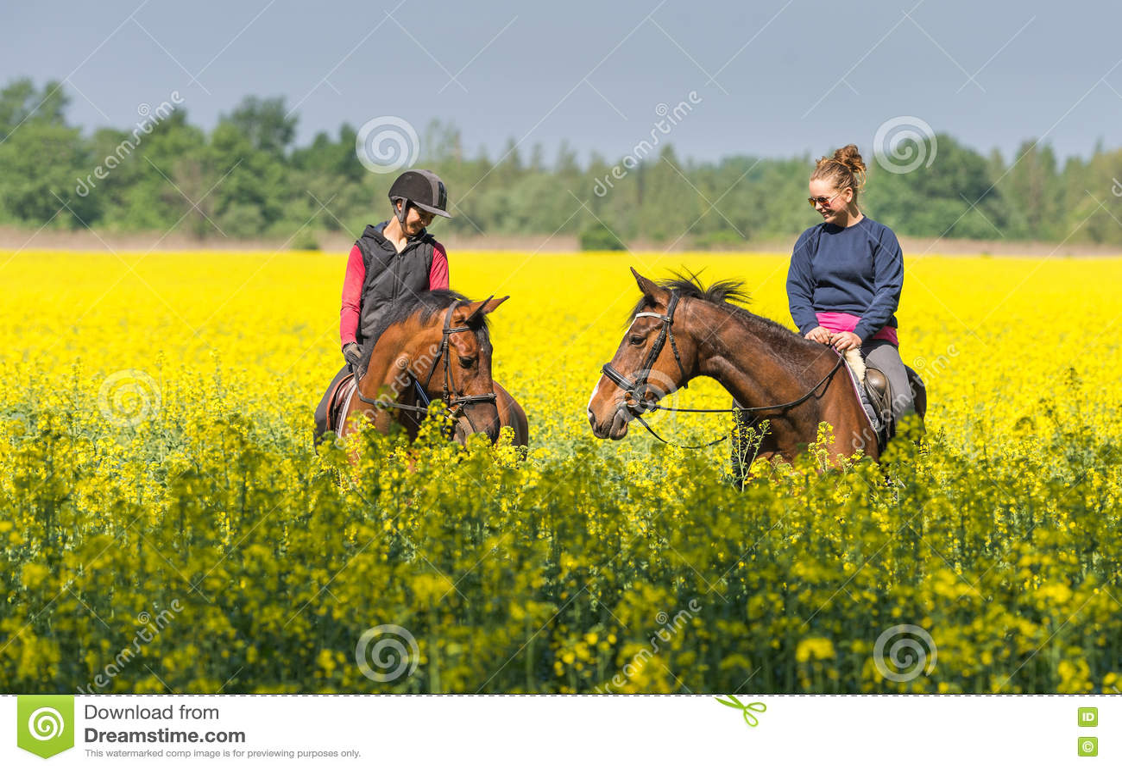 езды лошади девушки